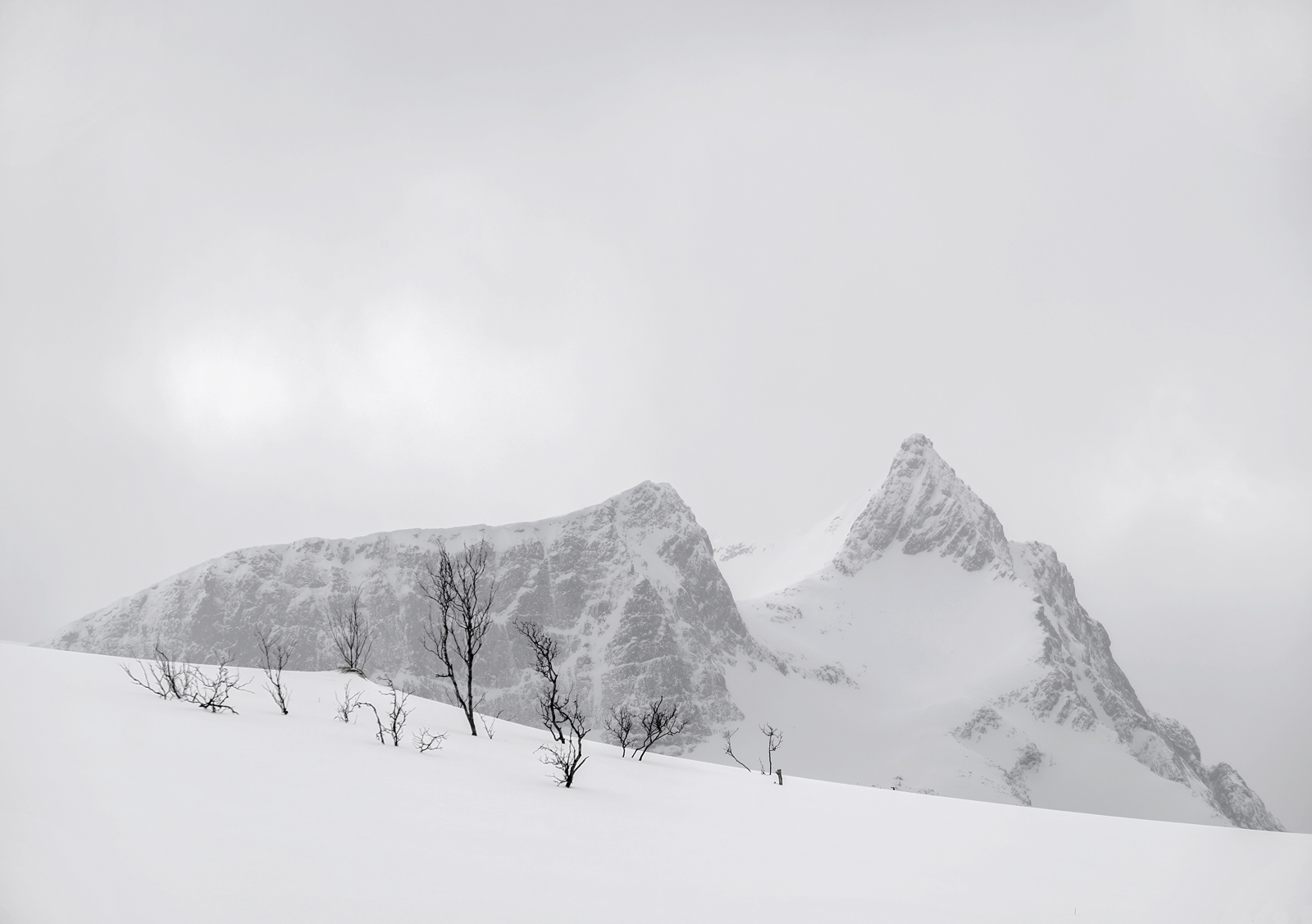 Charcoal Peak 5, Melfjordbotn, Senja, Norway, subdued, sunlight, sleet, mountains, birch, trees, visible, snow, etched, photo