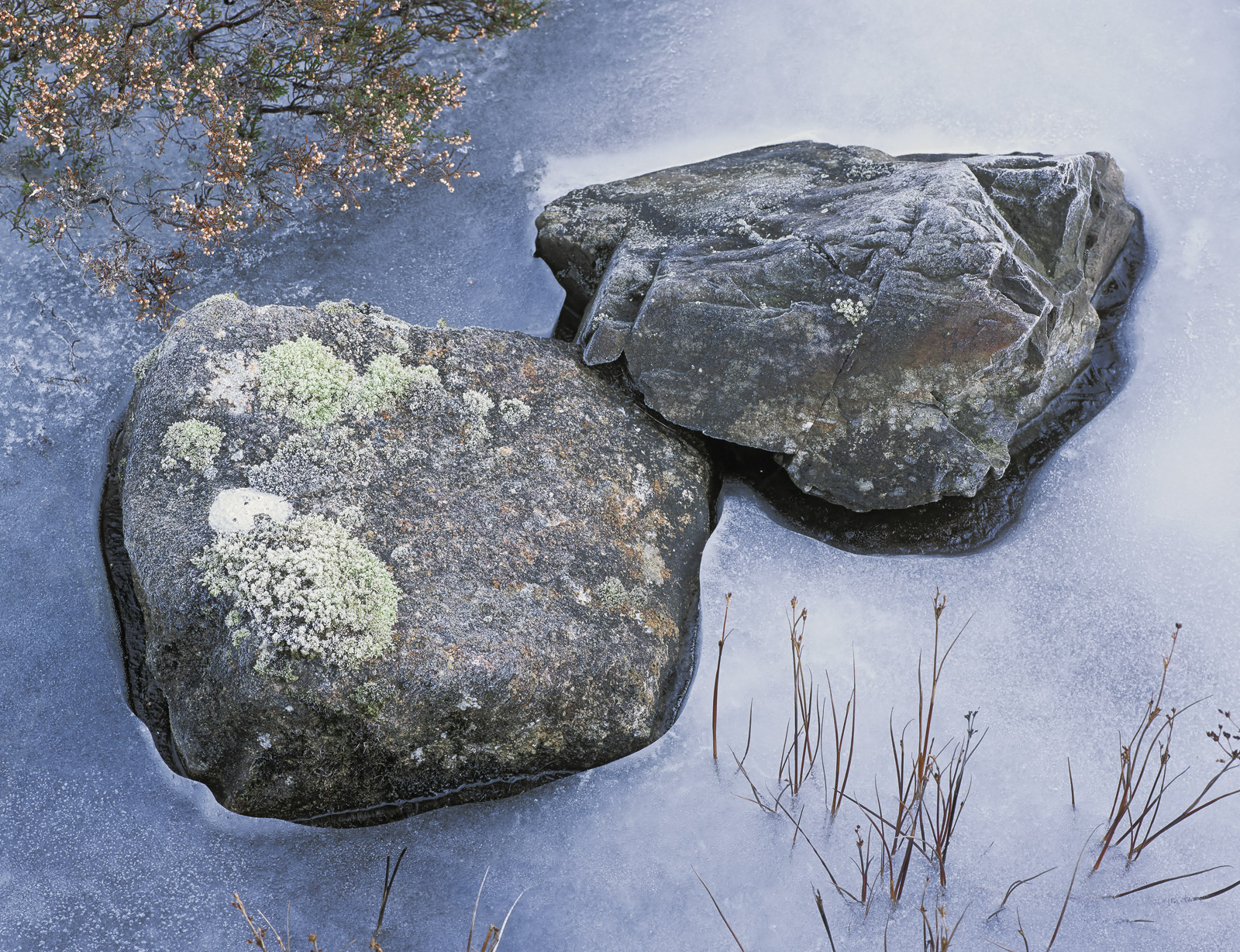 These two rocks dappled with the lichen and hoar frosted in a bed of icewere beneath a clear blue sky as a consequence the ice...