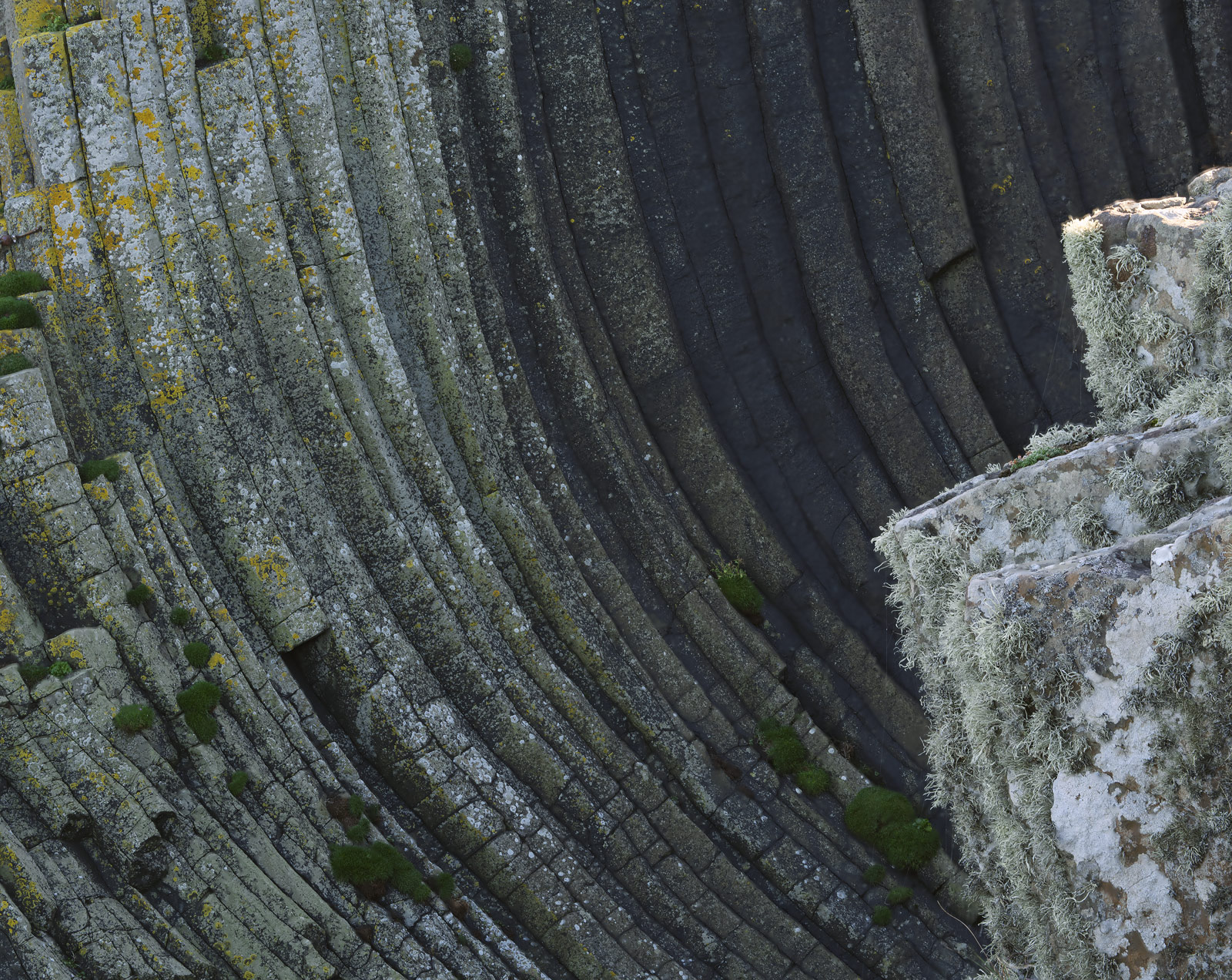 The basalt columns on Staffa are usually just that straight vertical columns of fractured grey hexagonal cross-sectioned rock...