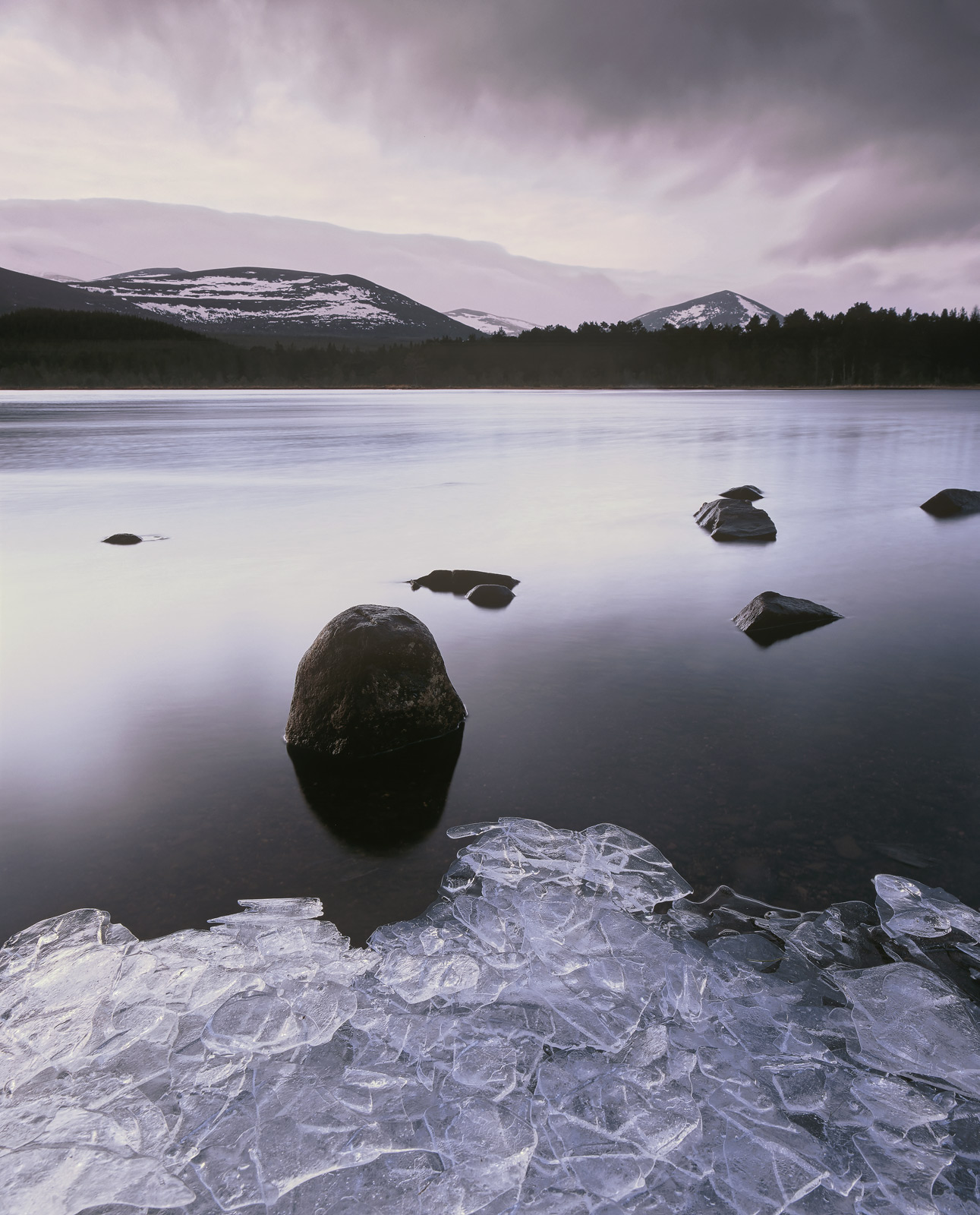 Thin layers of sheet ice had frozen over the shoreline of Loch Morlich on a cold and steely blue winter morning. However...