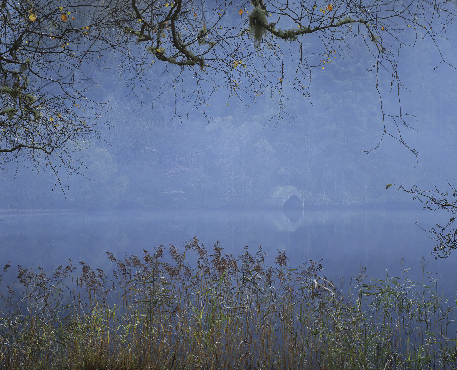 Dark is the Light, Loch Ard, Trossachs, Scotland, green, shed, boat, familiar, smokey, hazy, still, damp, autumnal, twil, photo