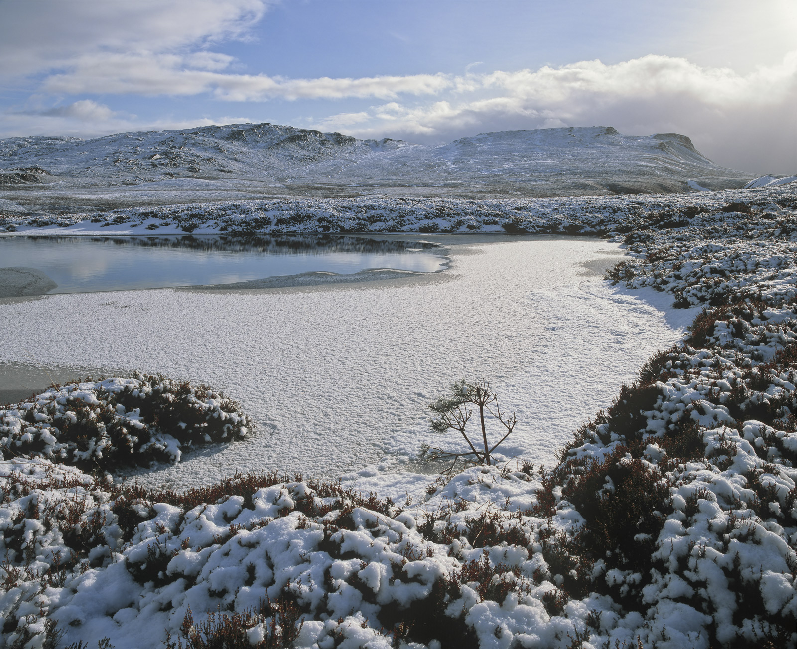 The Dava Moor is Moray's lung, a high altitude plateau covered in heather and hills and spurious lochans and shortly to be the...