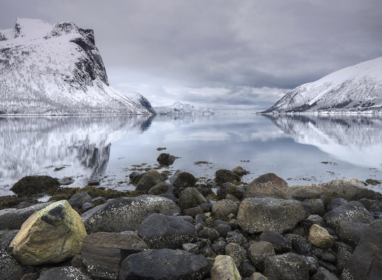 Dawn Bergsbotn Fjord, Bergsbotn, Senja, Norway, winter, colour, shoreline, salt water, freezing, monochrome, mountains, photo