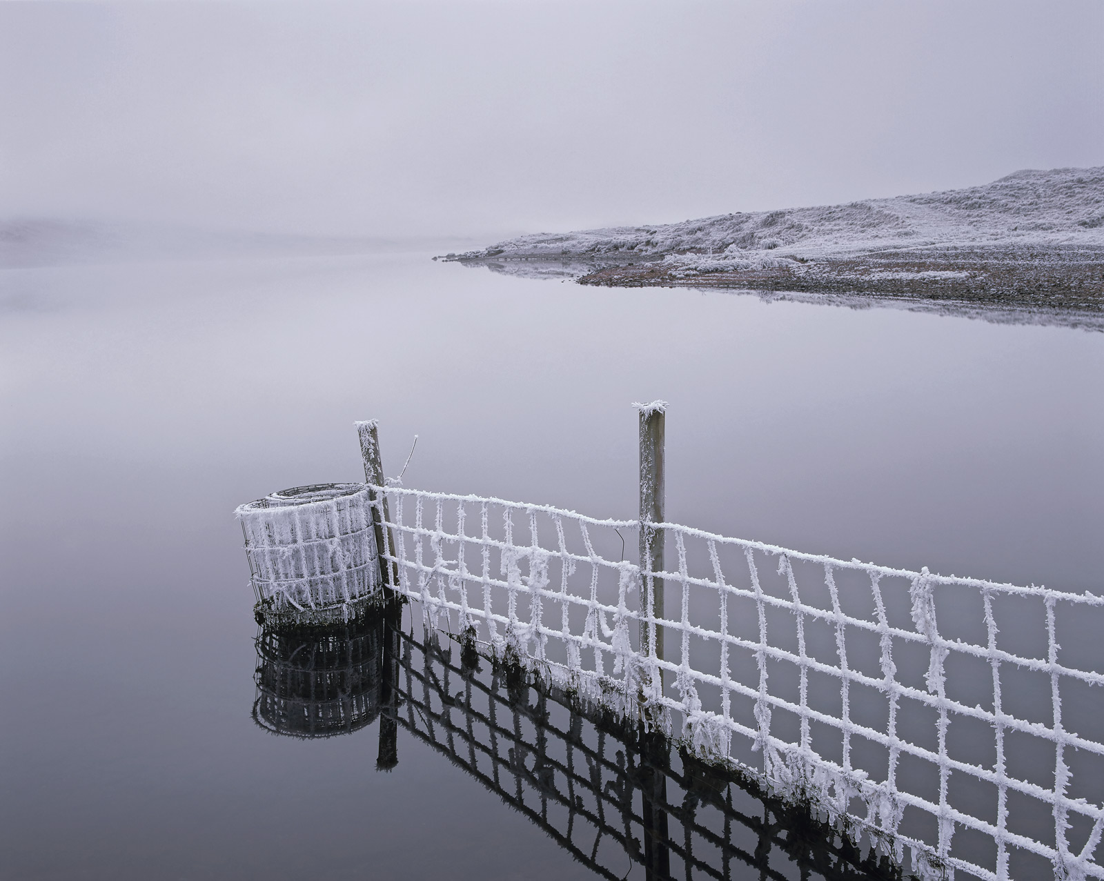 The palpable sense of serene silence I experienced on this brittle cold morning was so tangible. It was as though all the...