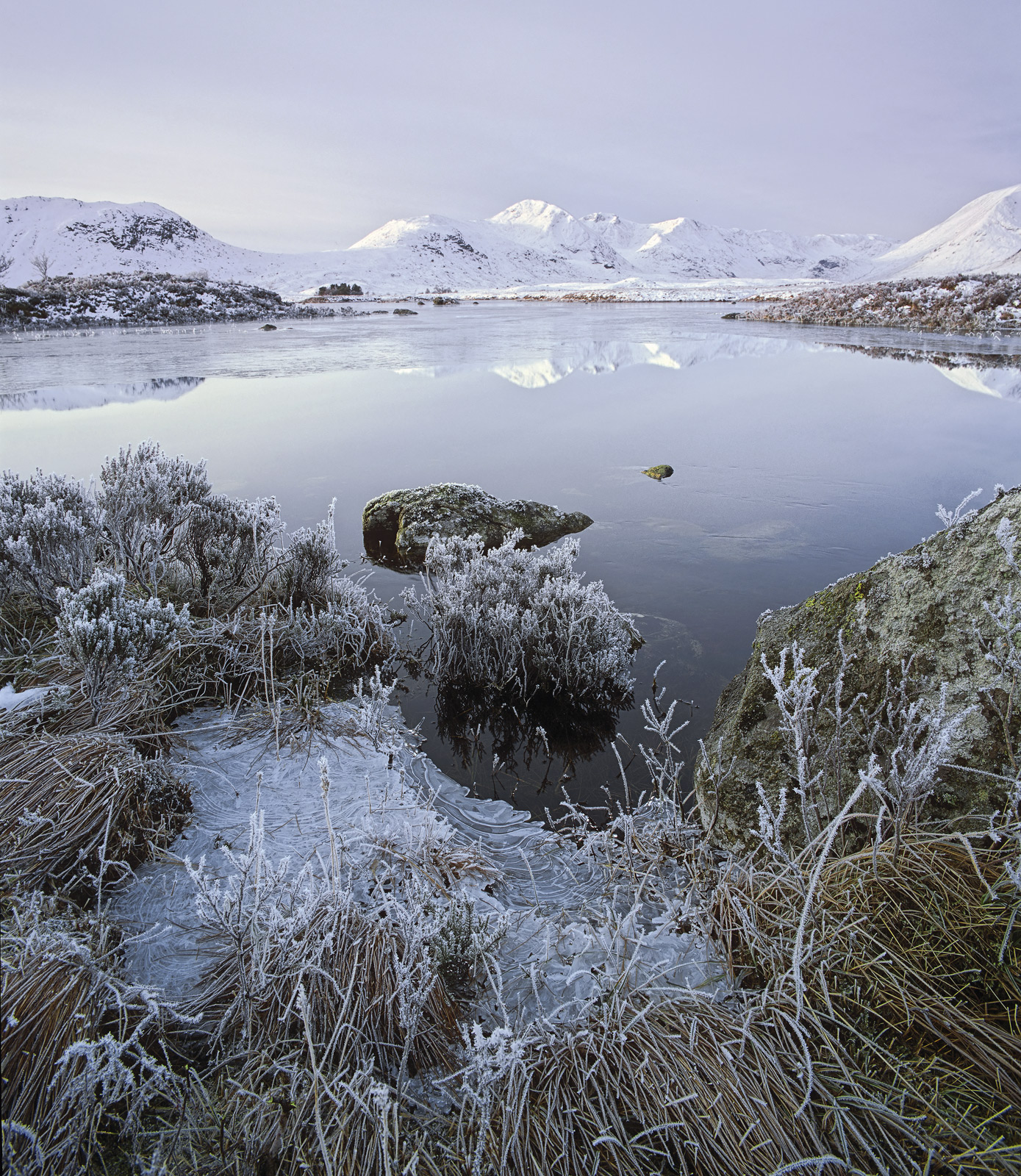 A bone chilling frost descended on Loch n'a-chlaise on Rannoch moor freezing every blade of grass and twig and encapsulating...