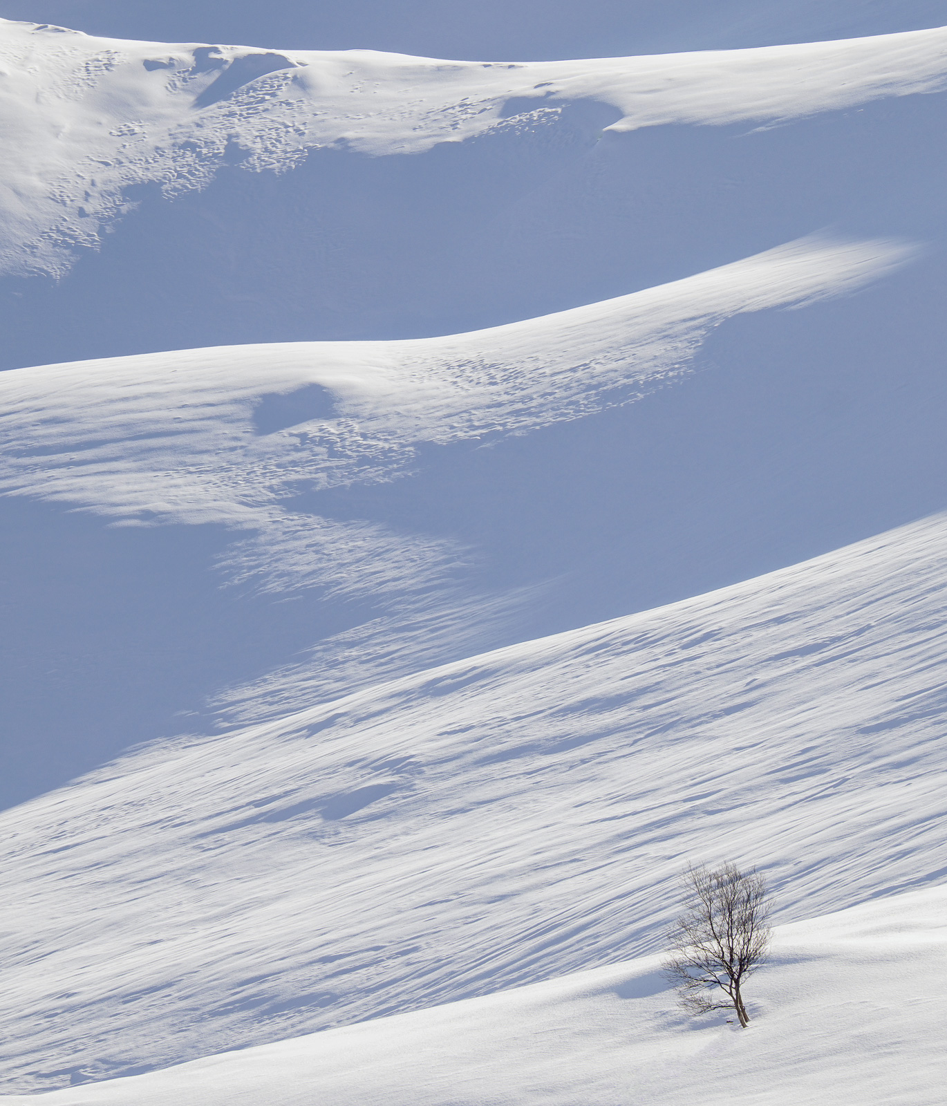 Deep Snow 4, Anderdalan, Senja, Norway, ribbed, blue, shadows, rolling, mounds, snow, flattened, perspective, compressio, photo