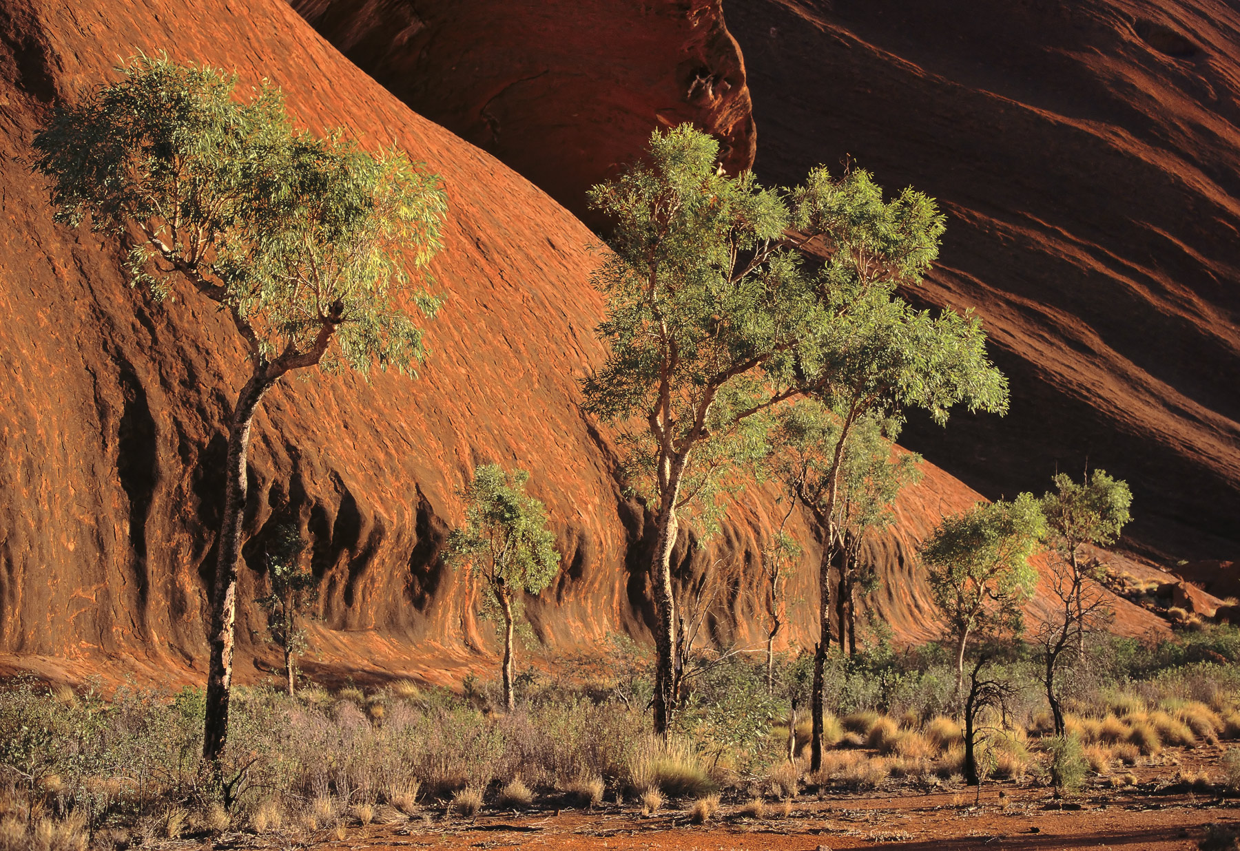 Rather than climb up Ayers Rock which seems to be regarded as a rite of passage but is never-the-less something which the native...