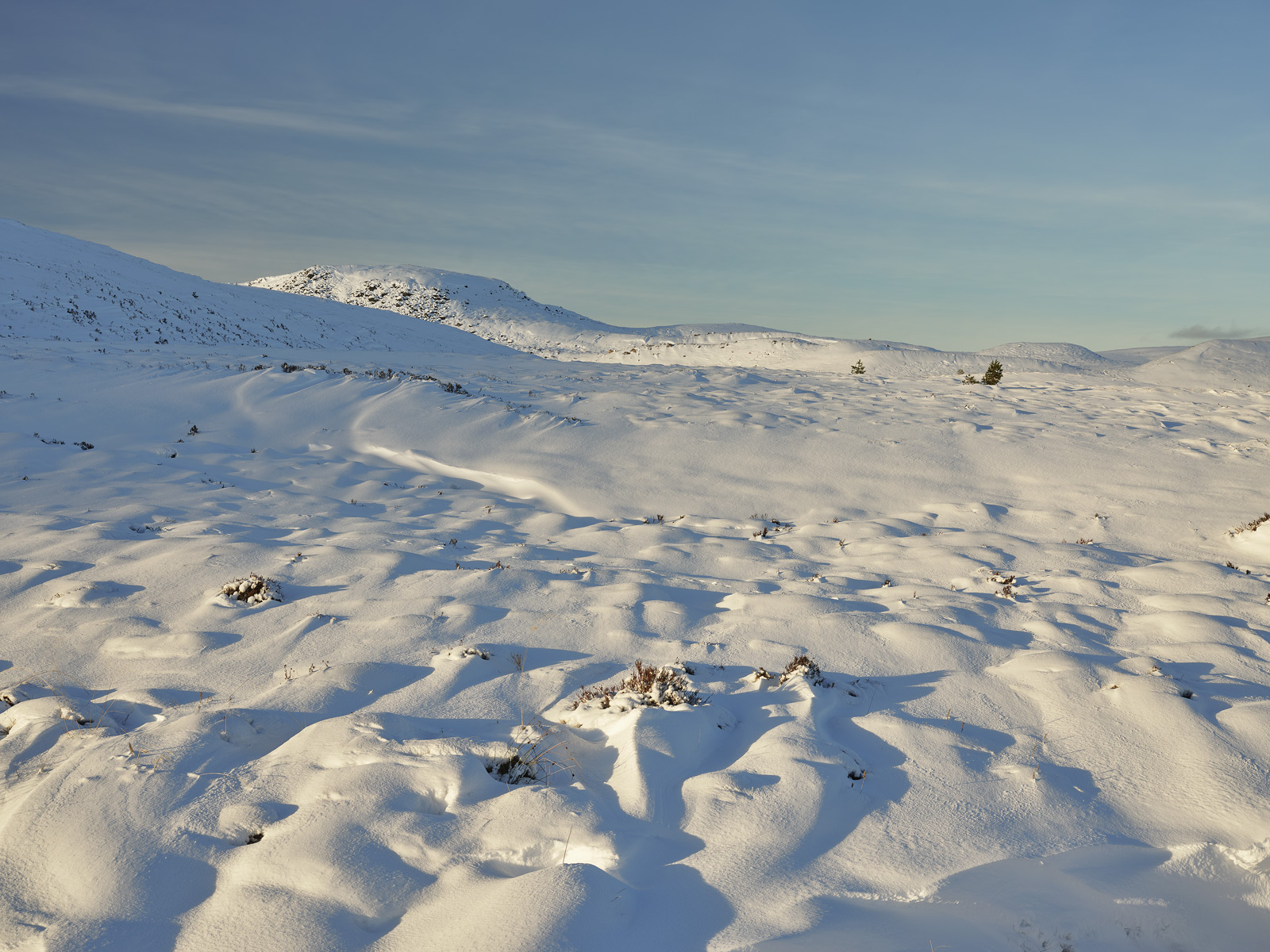 A fresh new quilted blanket of snow settled near the summit of Dava Moorand I was lucky enough to have very fine raking golden...