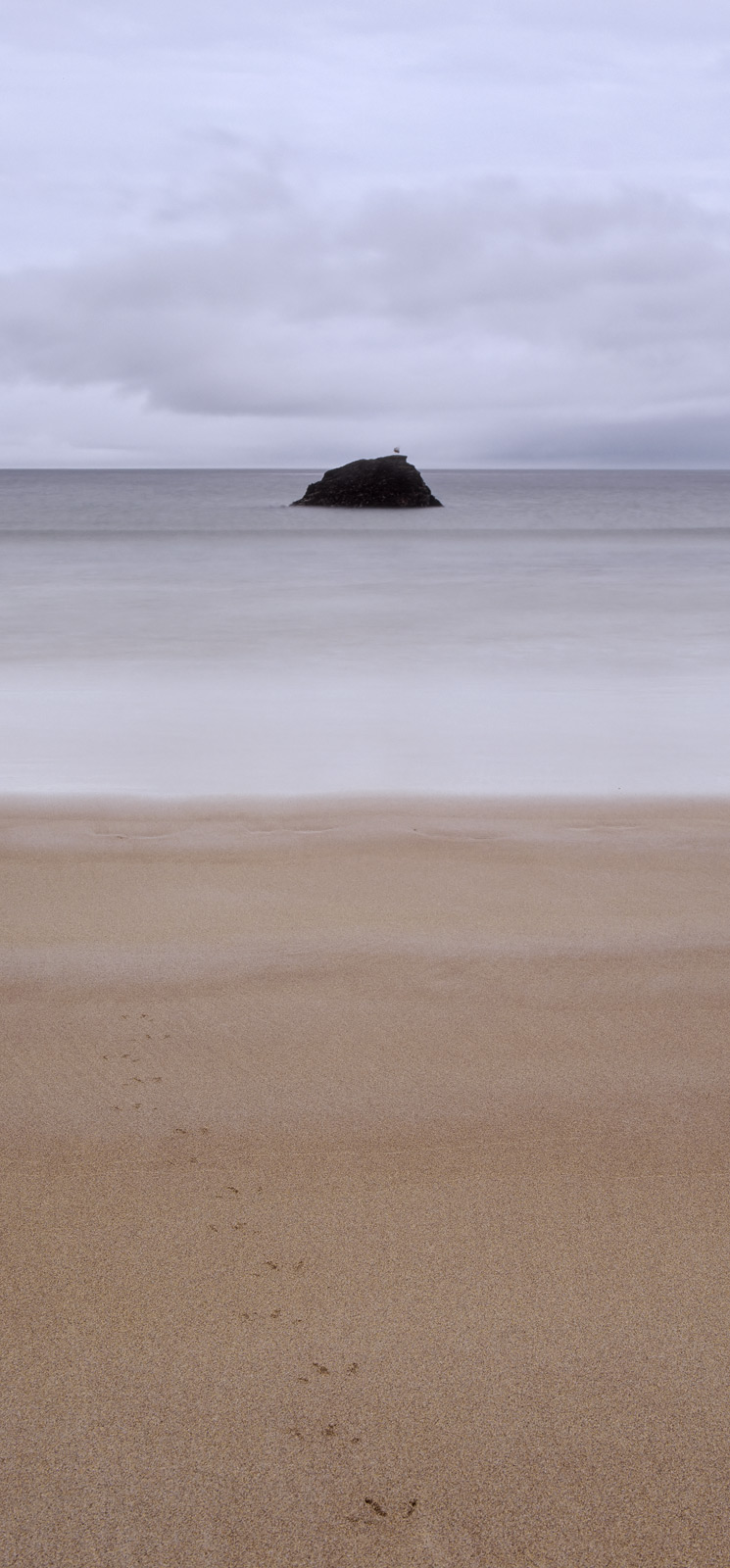 A little bit of poetic license with the title granted but this was one fabulous deserted and lonely beach of scintillating unblemished...