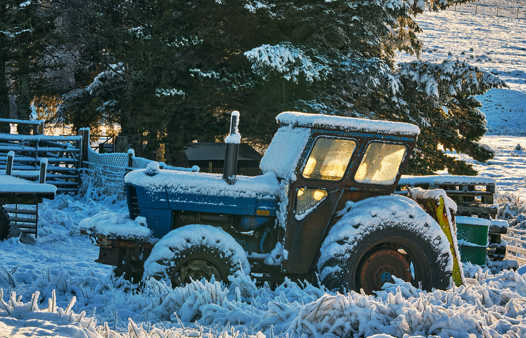 Near by the Crask Inn was this furloughed tractor collecting snow and rust. For a few minutes golden sunlight escaped around...