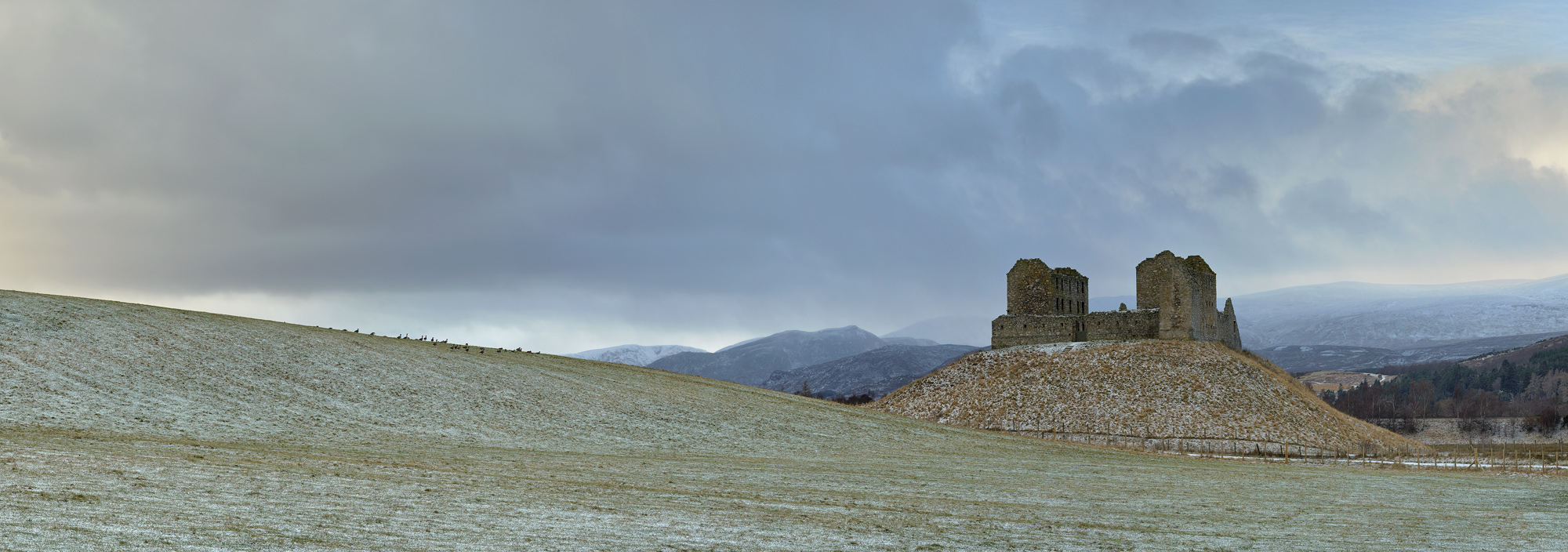 Geese Grazing Ruthven Barracks, view, panoramic, geese, field, grass, podium, dusting, snow, sky, mood, chill, winter, photo