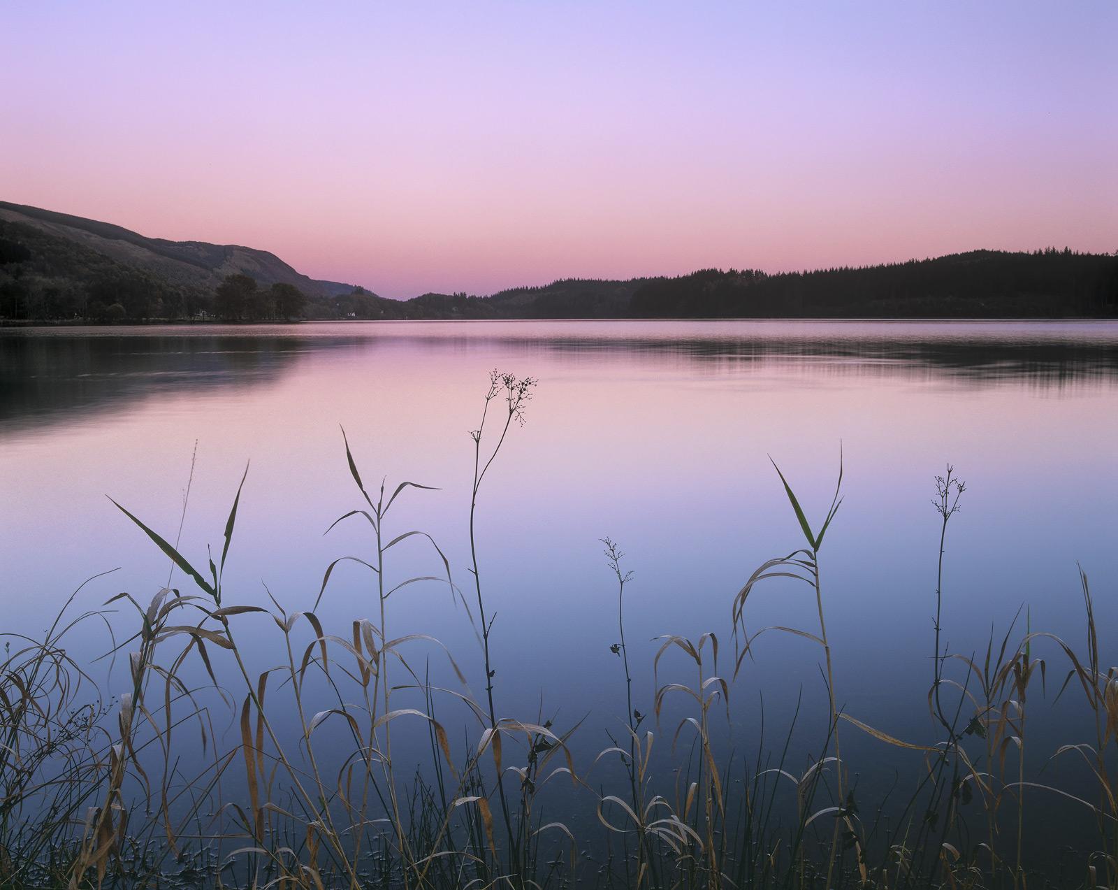 Gentle Twilight, Kinlochard, Trossachs, Scotland, sultry, still, evening, Earths shadow, plum, twilight, blue, reeds, wi, photo