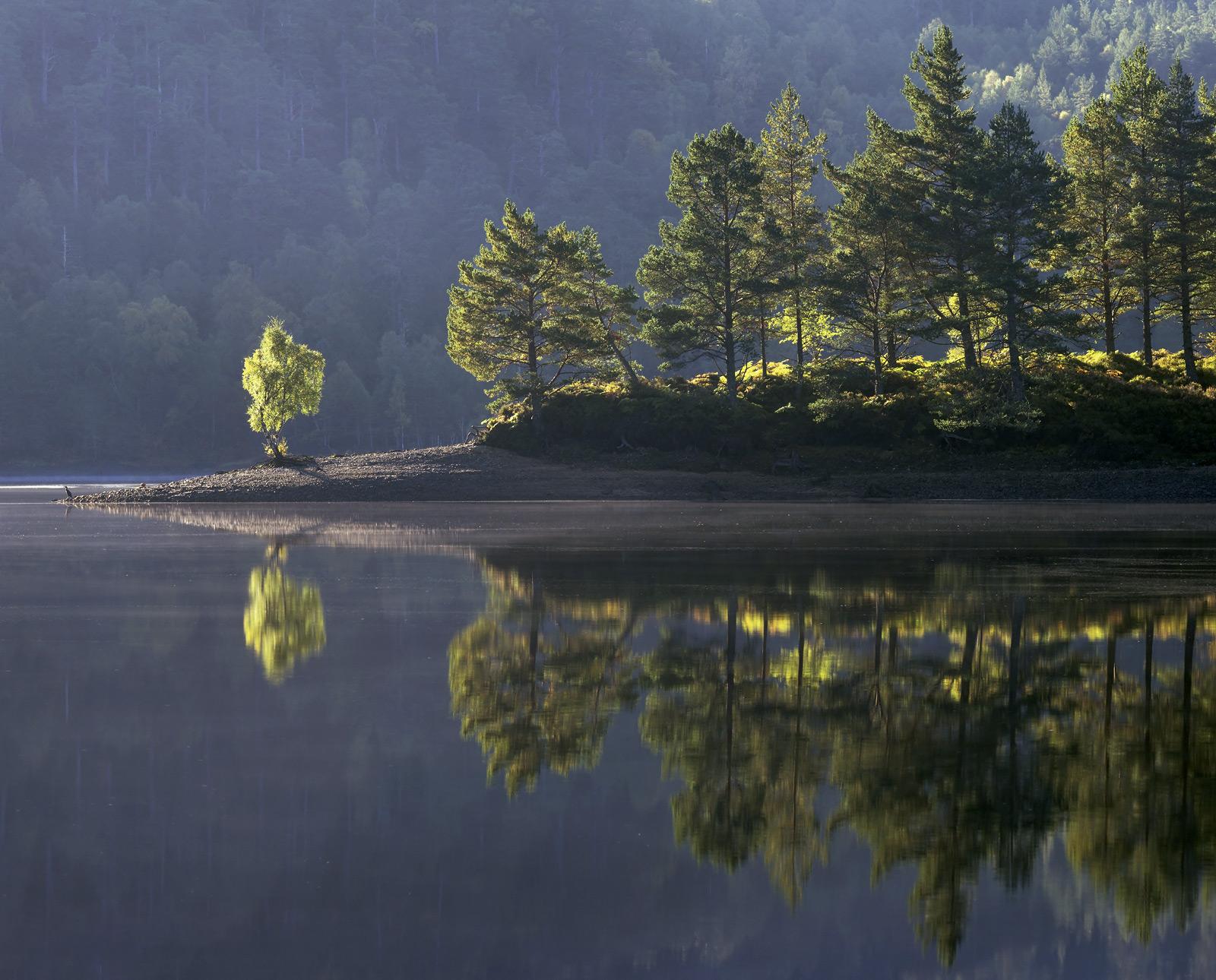 Glen Affric Mirror, Glen Affric, Highland, Scotland, birch, Scots pine, canopy, green, reflection, double, autumnal, shi, photo