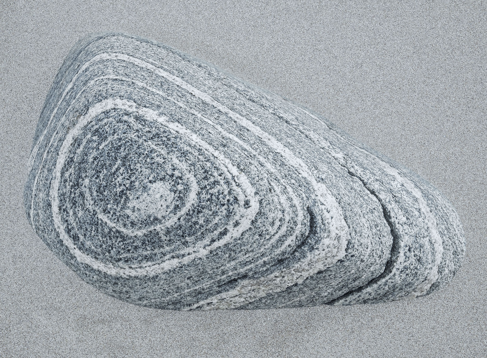 Gneiss is one of my very favourite rocks and this contoured and banded grey stone is particularly lovely half submerged in soft...