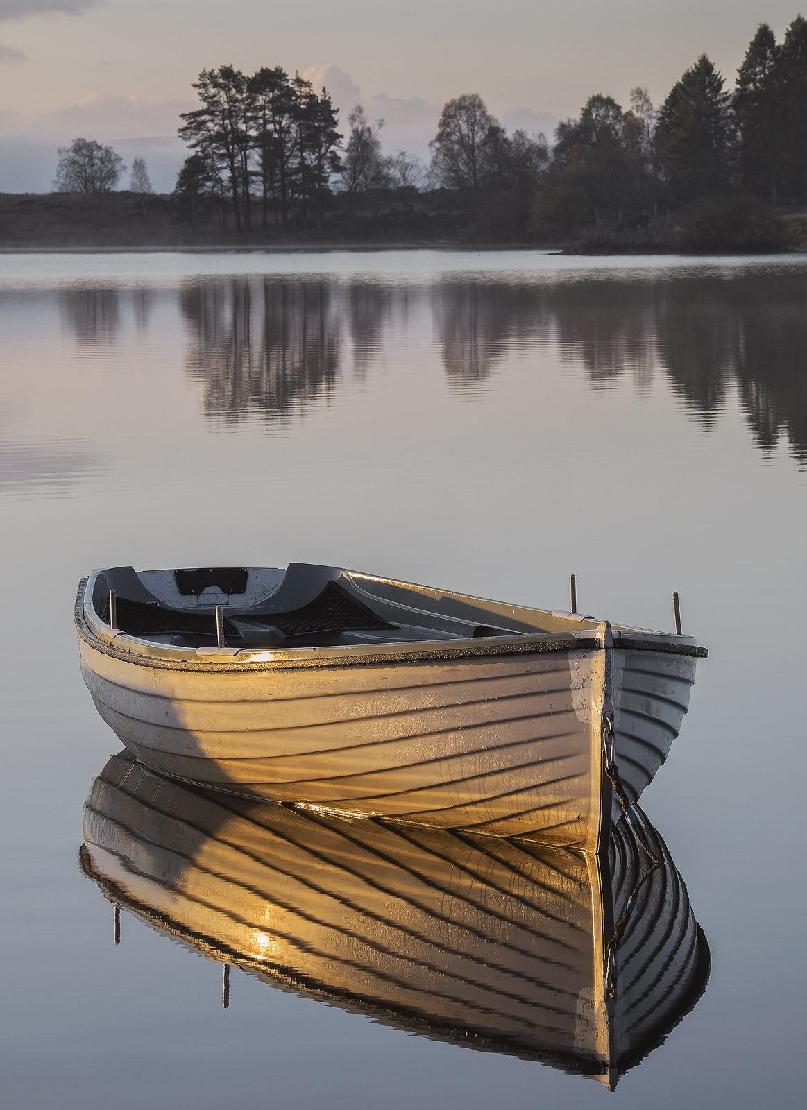 Gold Plated Rusky 1, Loch Rusky, Trossachs, Scotland, morning, sunshine, mist, golden, light, varnished, flank, burnishe, photo