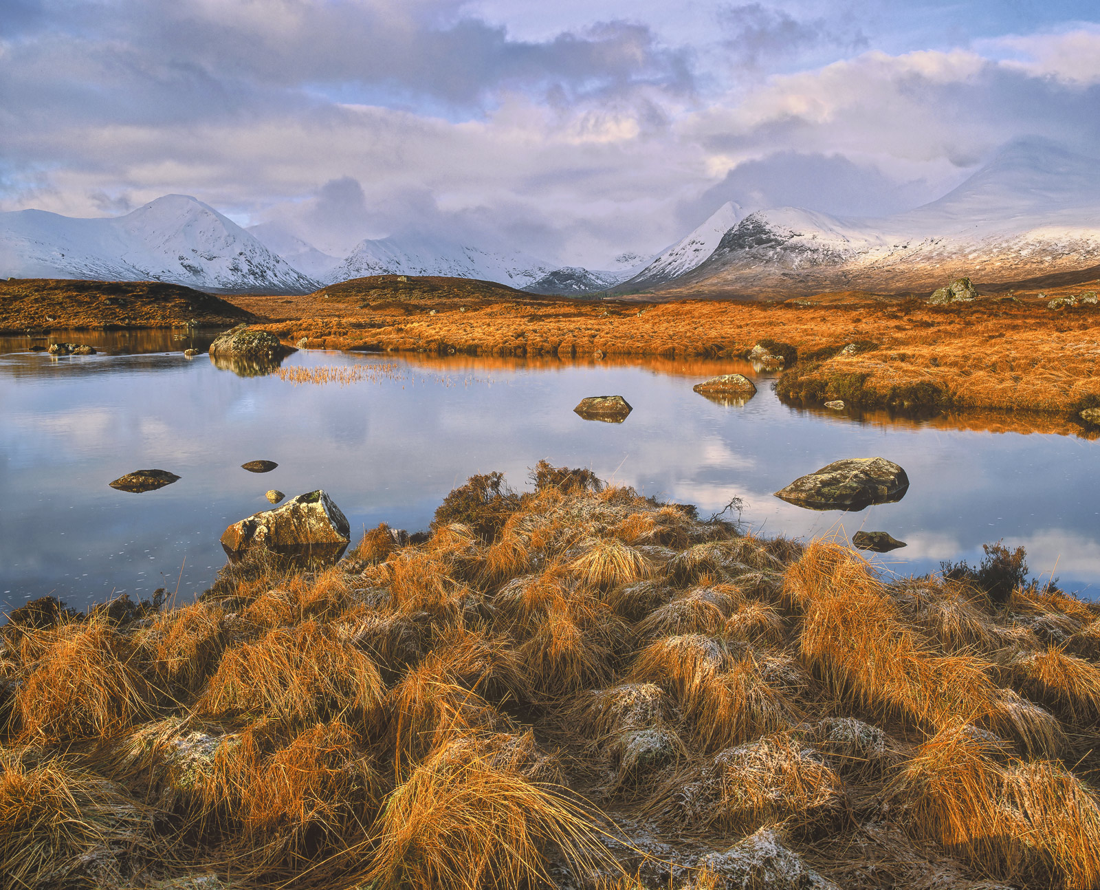 Golden tussocks of grass clump together at the end of a spit of land culminating in a reflection of the snow dusted Blackmount...
