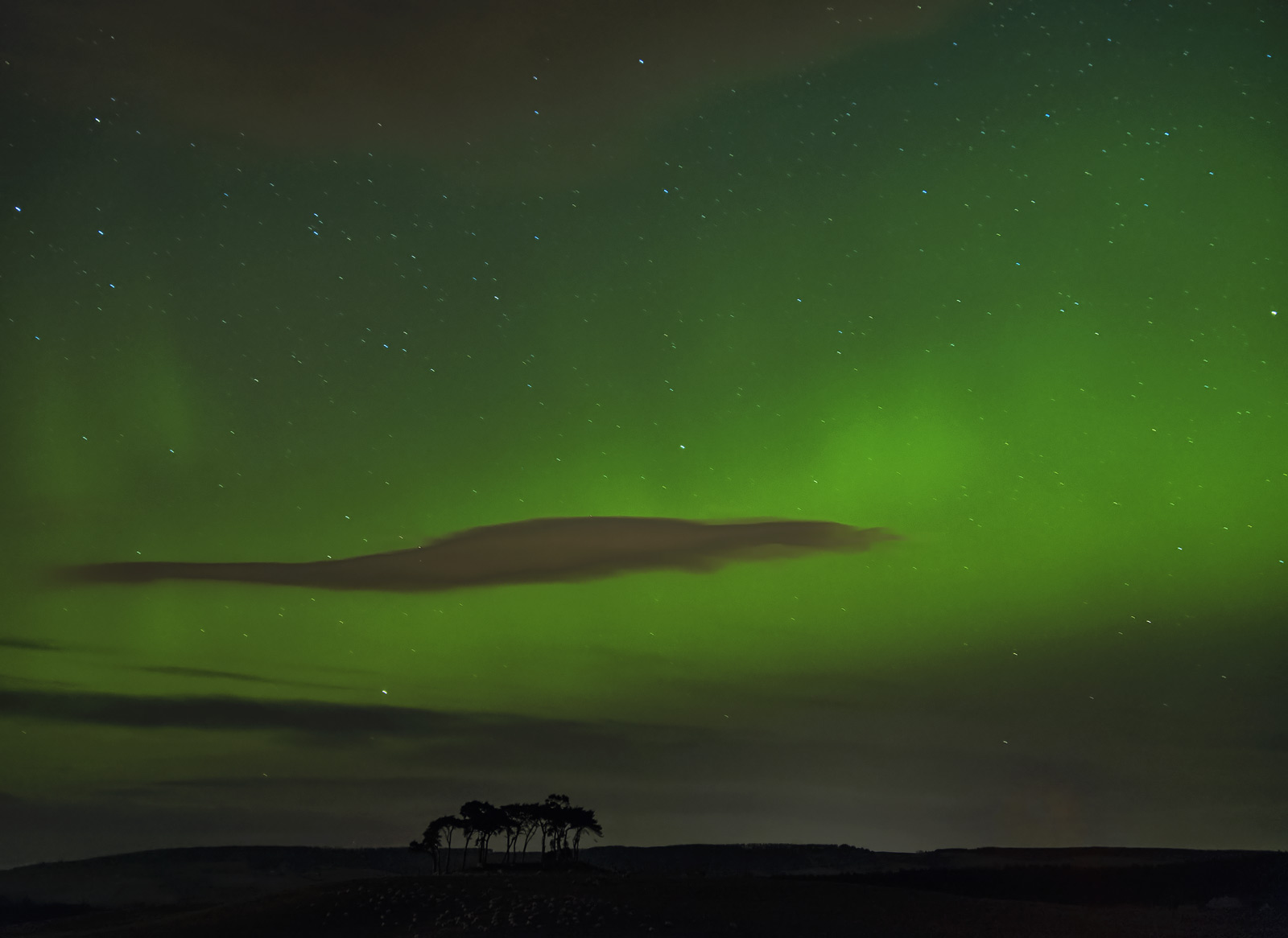 I am not a huge lover of aurora images most of the ones I see are just rendered far too luminously for my personal tastes and...