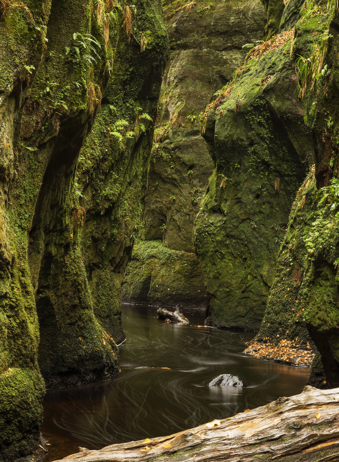 The emerald drapery in the Finnich Glen has to be seen to be beilieved.  A river meanders its way through it creating bubble...