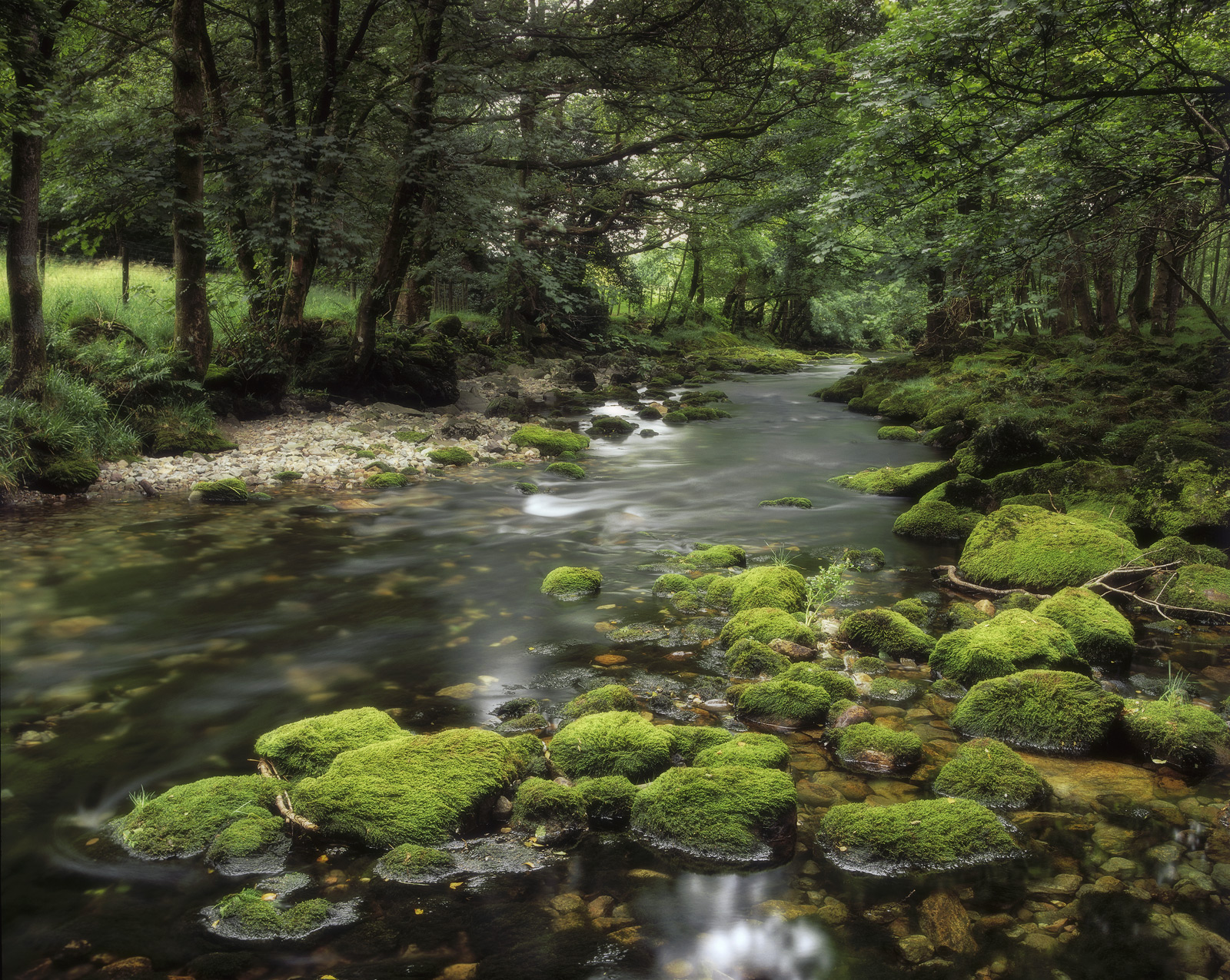 The lake district has some beautiful crystal clear trout streams that meander through it replenishing the lakes. The stones...