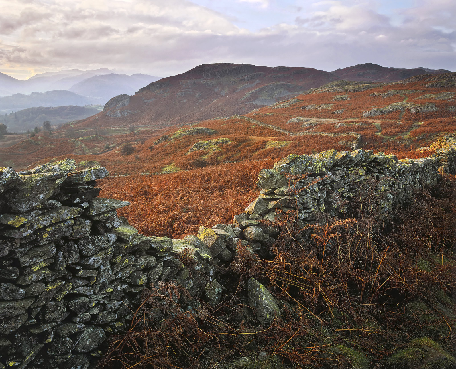 High above Ambleside is a walk that eventually takes you to loughrigg tarn by way of Loughrigg Fell. it is a delightful...