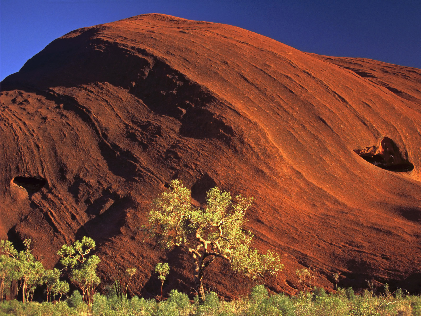 These iron rich rocks of central Australia are extraordinarily red due to the high ferrous content in its mineral structure....