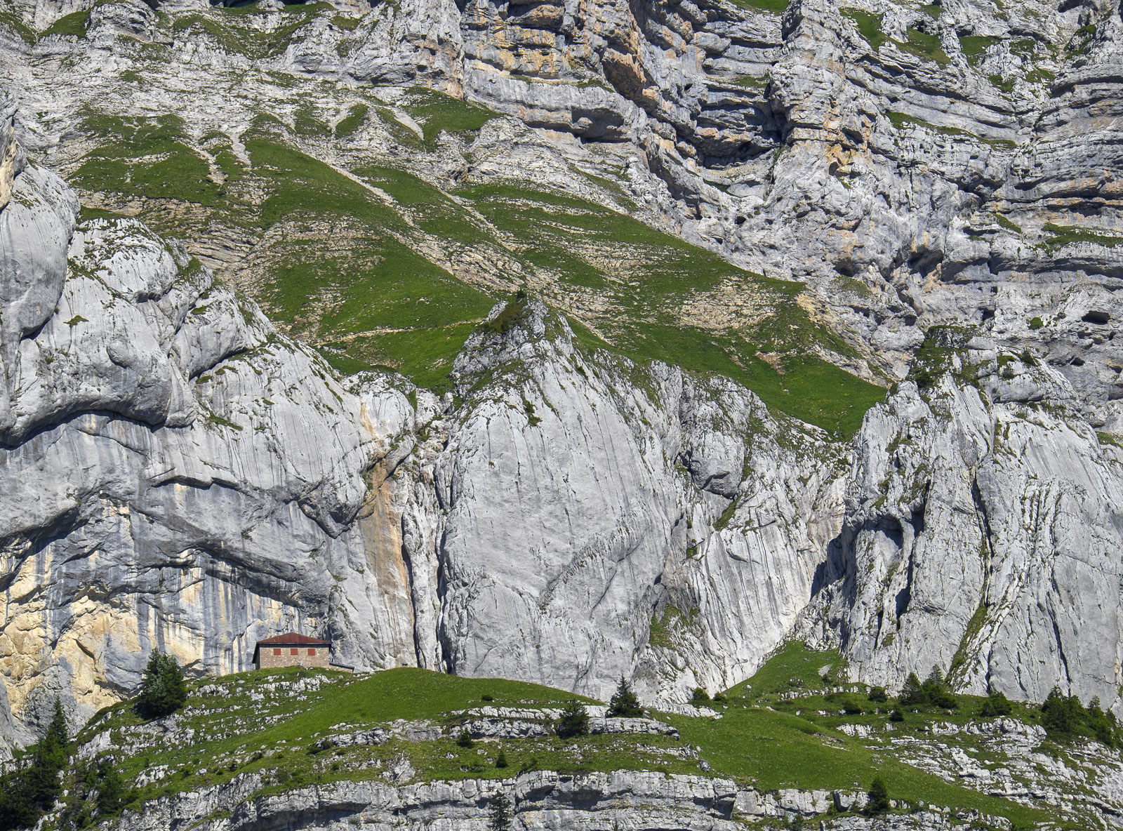 House in the Hill, Annecy, Haute Savoie, France, trail, arduous, summer, limestone, slab, green, grass, trees, station h, photo