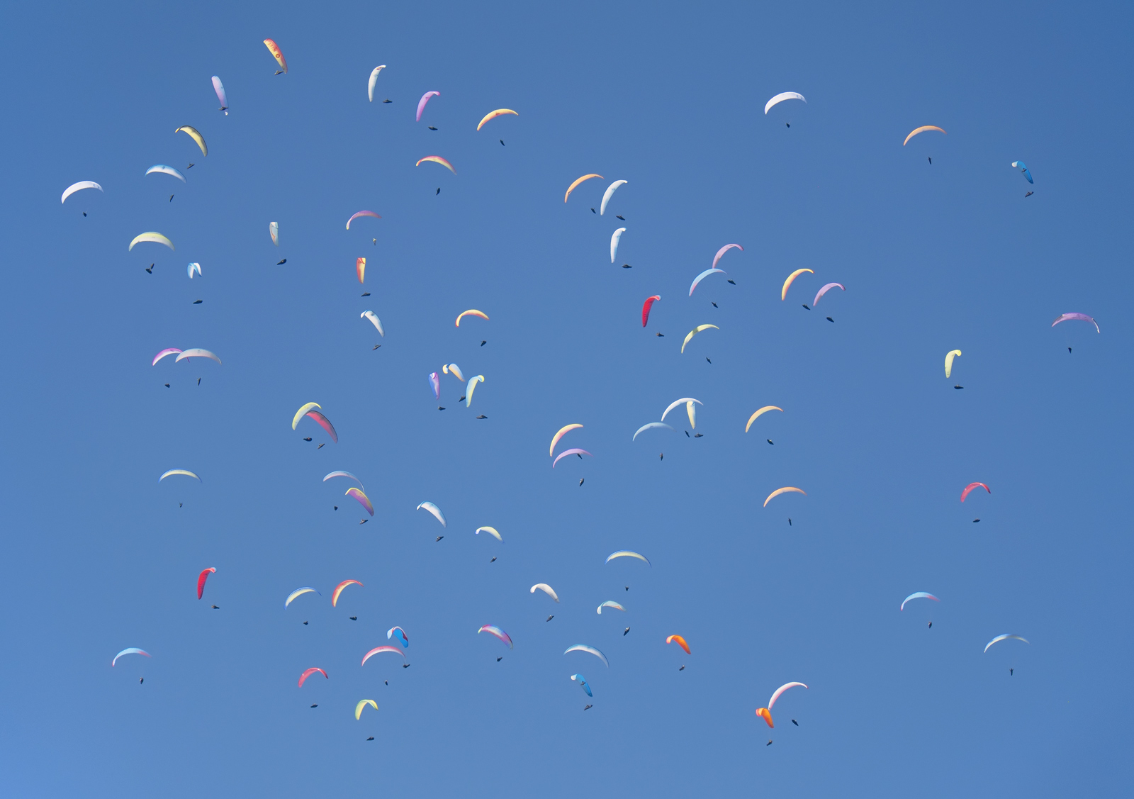 Hundreds and Thousands, Annecy, Haute Savoie, France, inspire, title, dozens, paragliders, wheeling, thermals, searching, photo