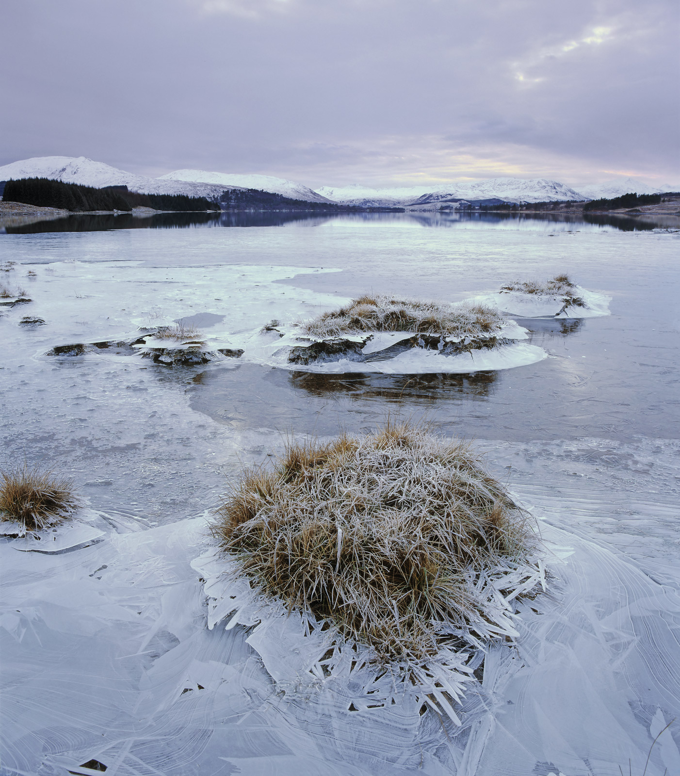 The ice flora in Loch Tulla are created after a period of heavy rain raises the level of the loch. Following that a cold...