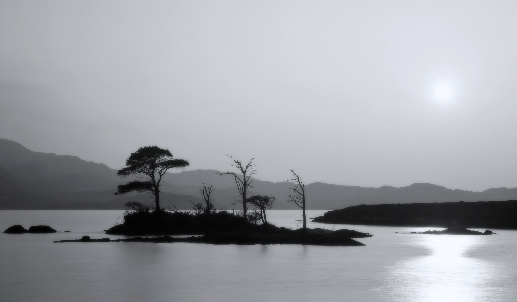 An island of isolated Scots pine trees proved surprisingly difficult to separate an essential element of making this silhouetted...