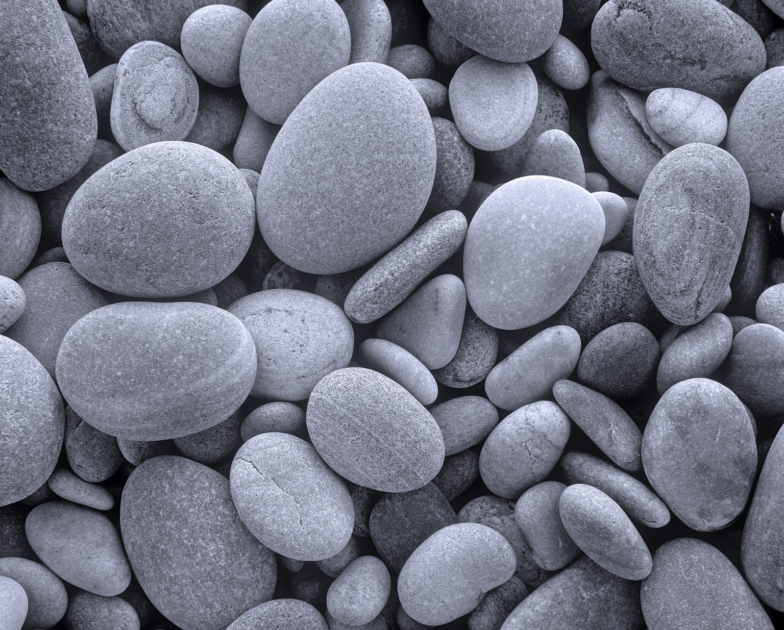 These smooth rounded pebbles have been cast into the upper regions of Findhorn's beach during a winter storm. They are...