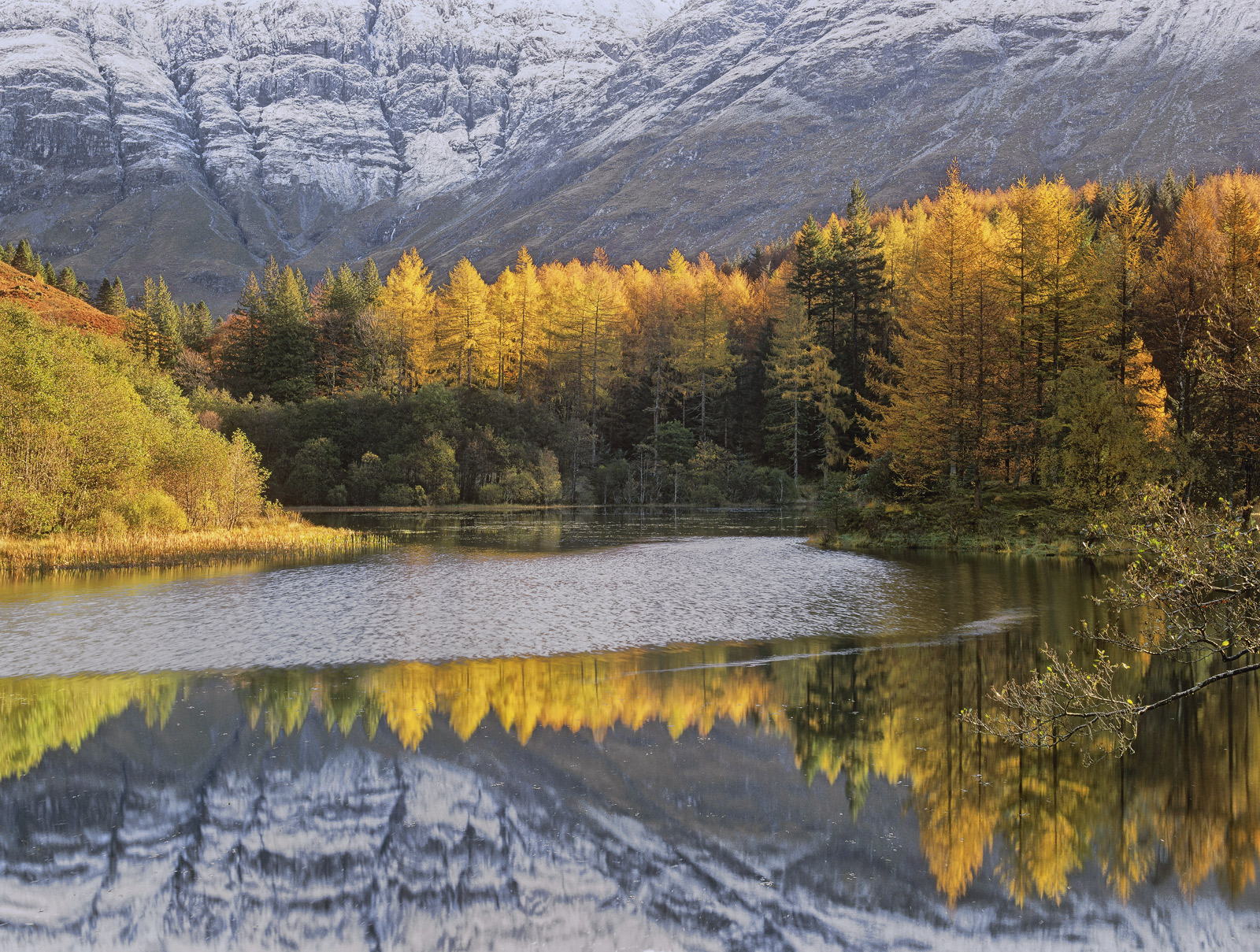 This little lochan is an unexpected find on the quiet B road out of Glencoe village. It often has superb reflections on...