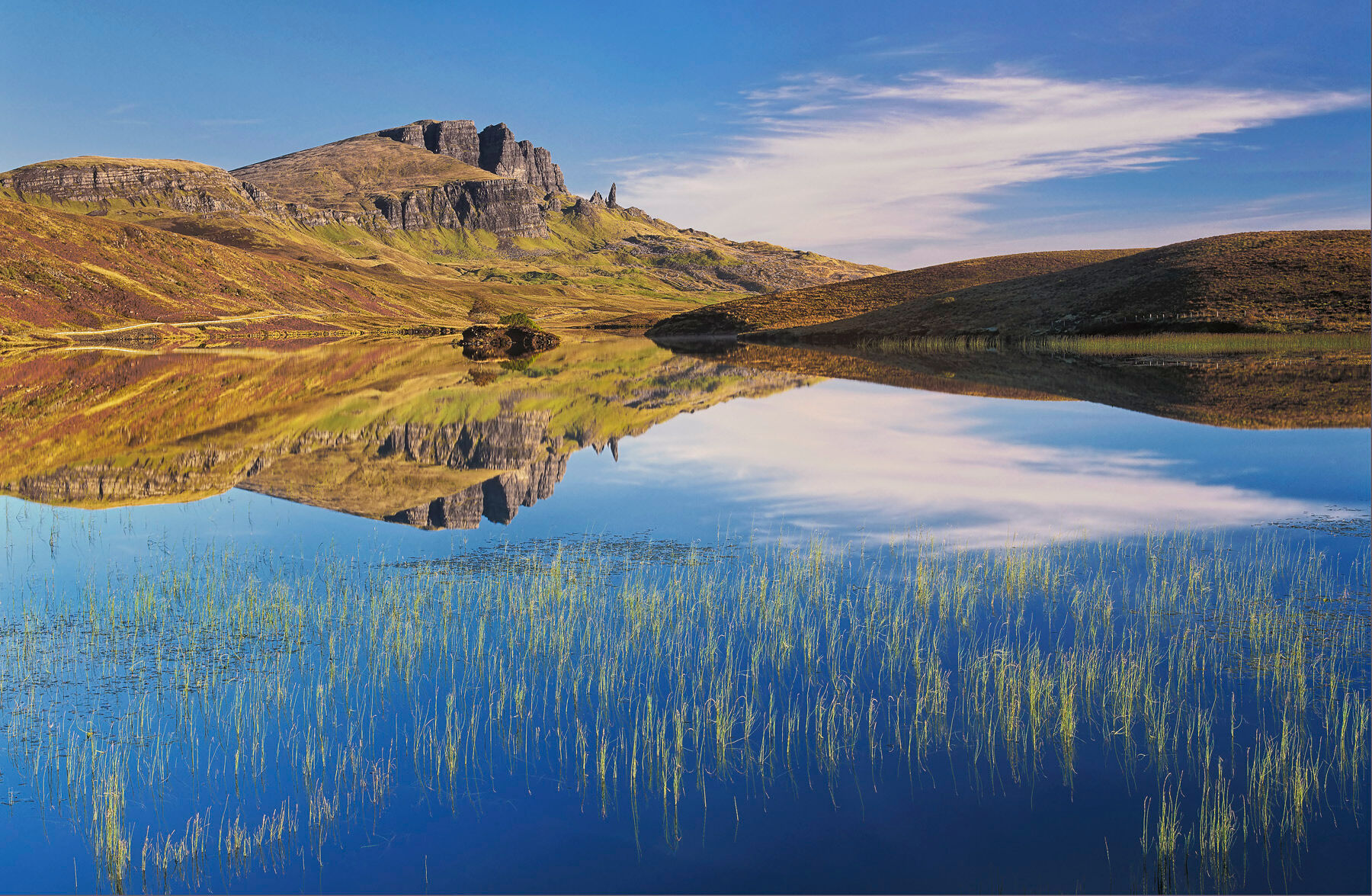 Loch Fada Sublime, Loch Fada, Skye, Scotland, perfect morning, spiked, reed, bed, pattern, needle, Old Man of Storr  , photo