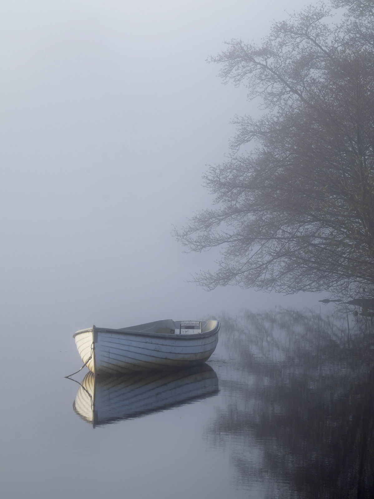 Another of Loch Rusky with its small collection of pale blue wooden row boats that look so charming on a still misty day.&nbsp...