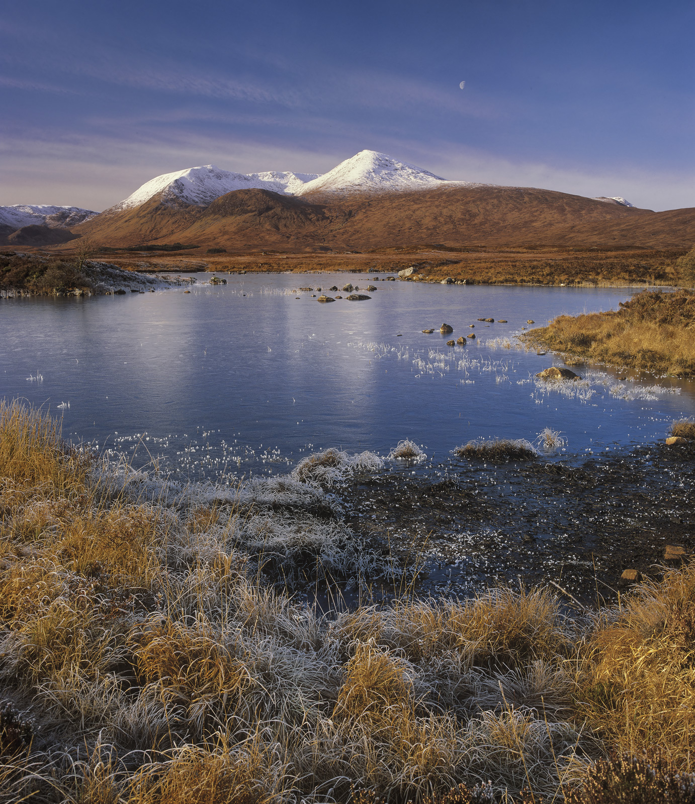 The dazzlingly bright and white snow dusted Black Mount beyond Rannoch Moor Lord over the golden grasses and frosted reeds that...