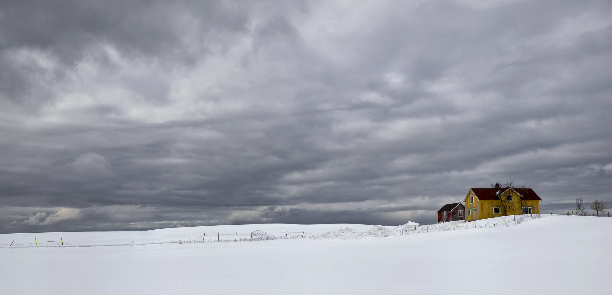 Mustard House Pano, limited colour, drama, fenced, fields, beach, turbulent, storm, snow, rorbrua, red, mustard, house, wooden, isolated, winter , photo