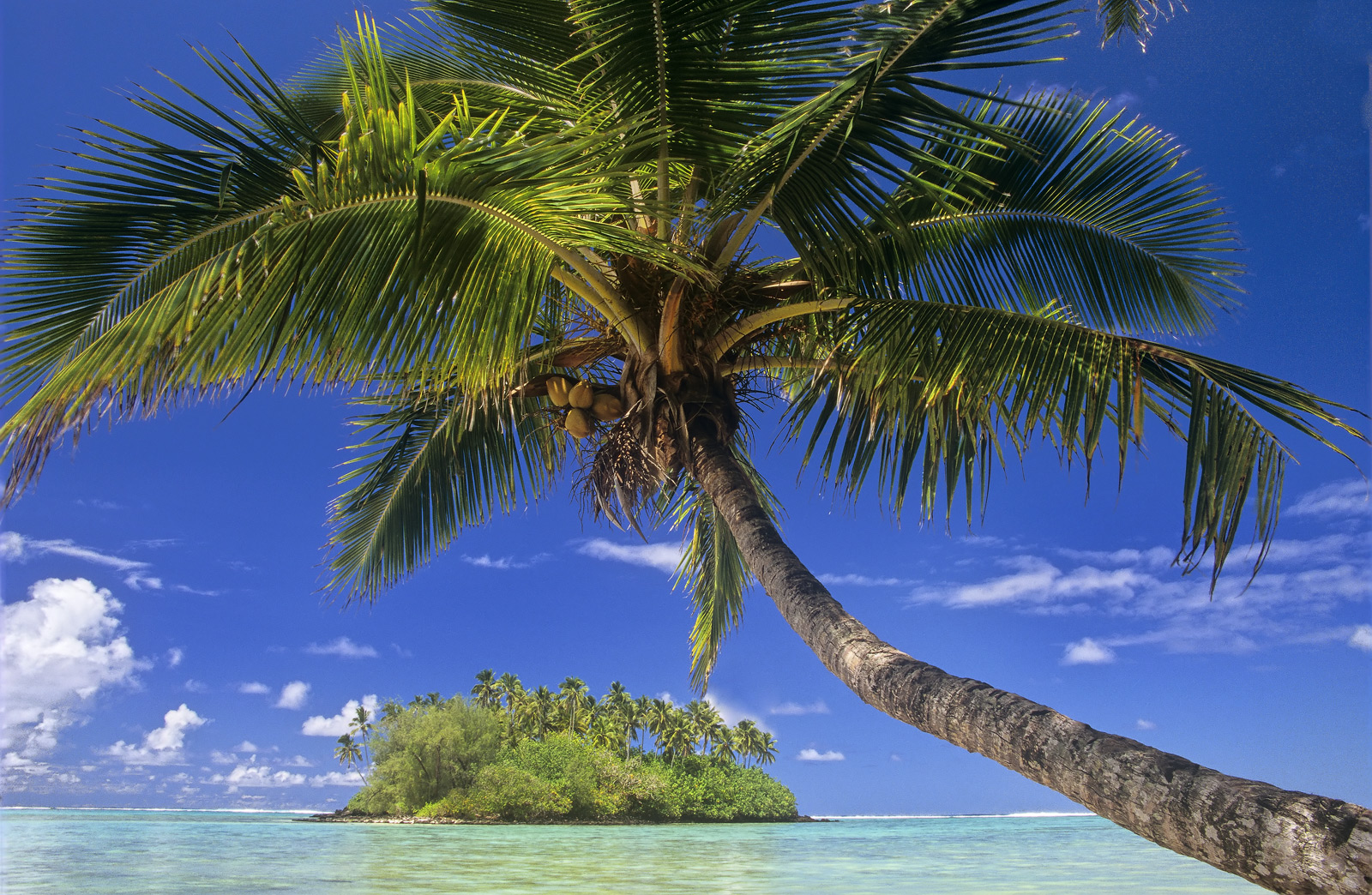 A quintessentially tropical island scene that shouts wish you were here. I photographed this on a bright breezy morning...
