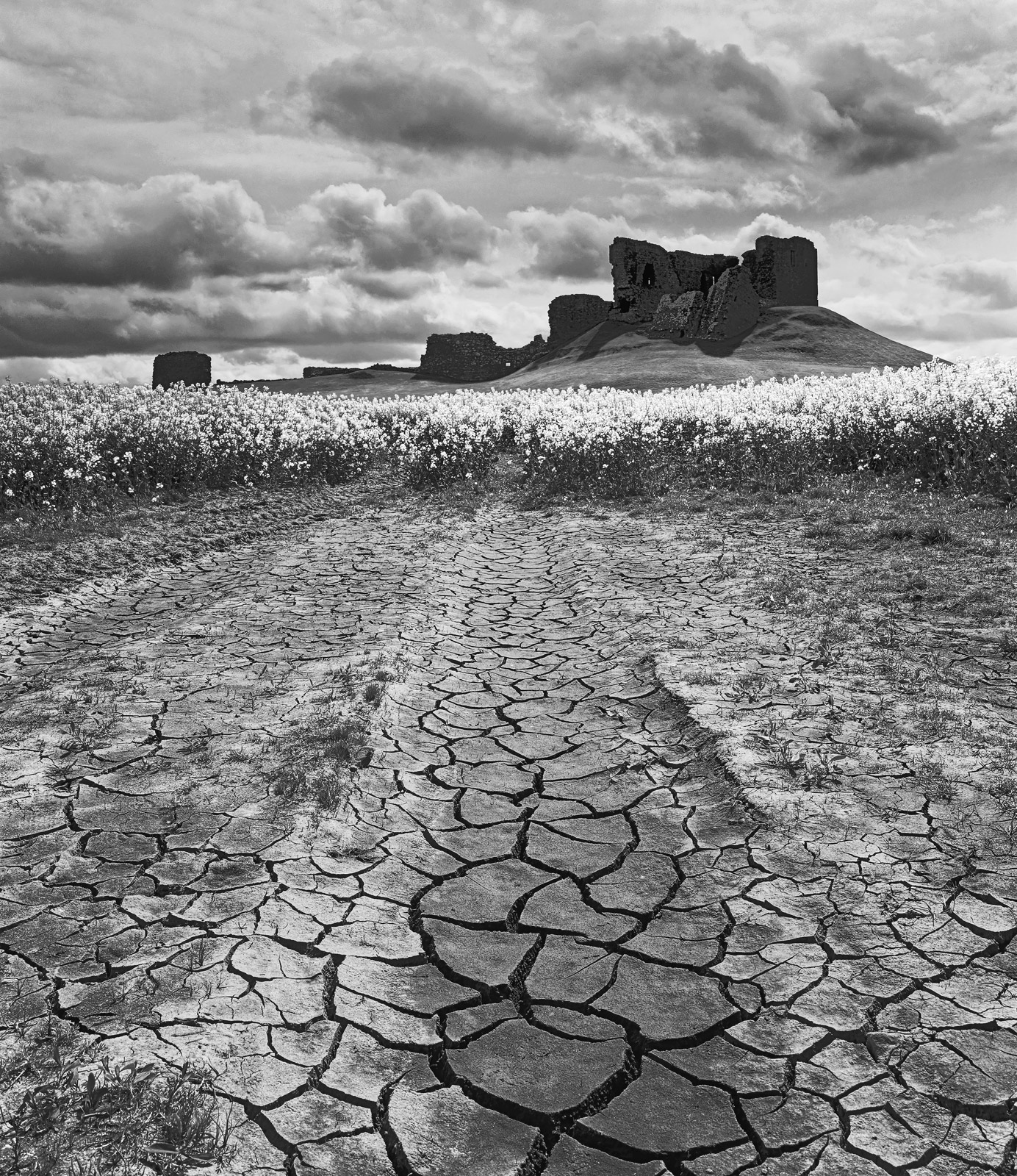 The texture and contrast of this picture of Duffus Castle appealed to me more than the vibrant colour of the rape field mid way...