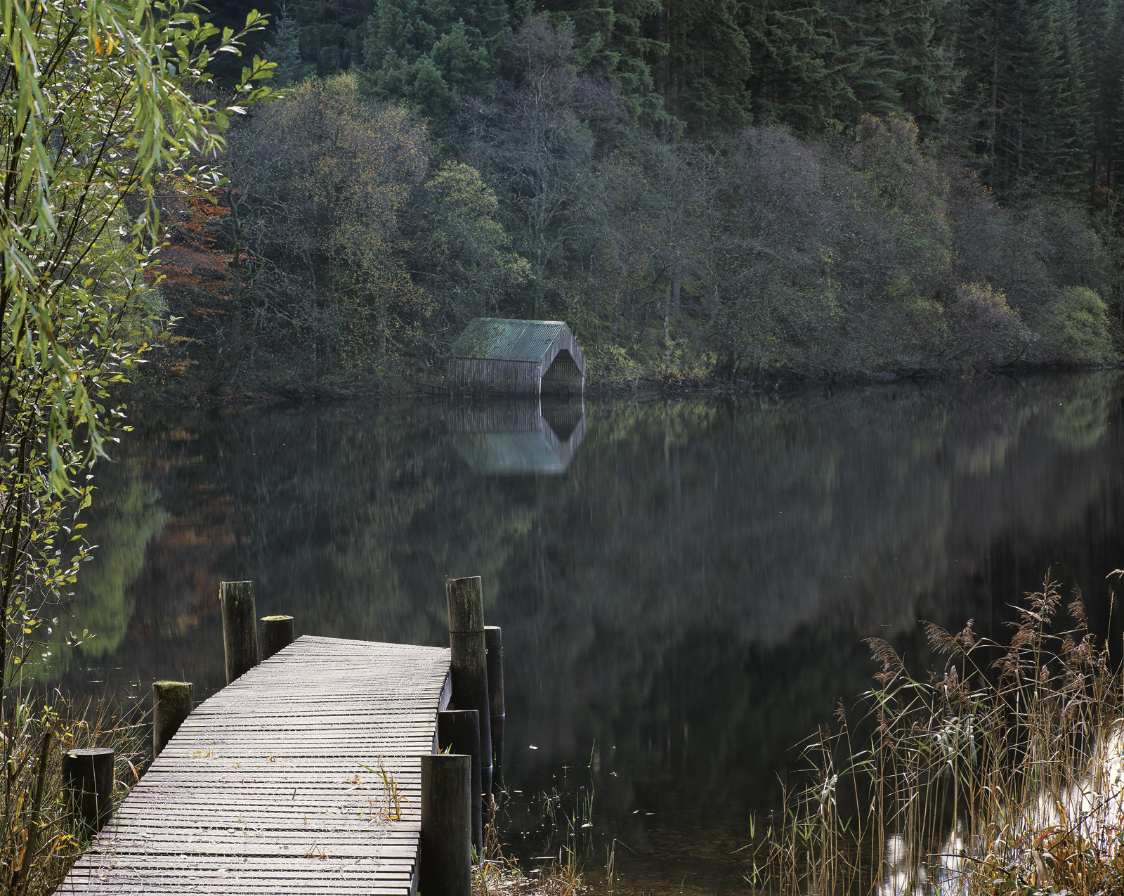 Quiet Corner Loch Ard, Loch Ard, Trossachs, Scotland, sombre, green, shed, boat, delicate, wooden, jetty, subdued , photo