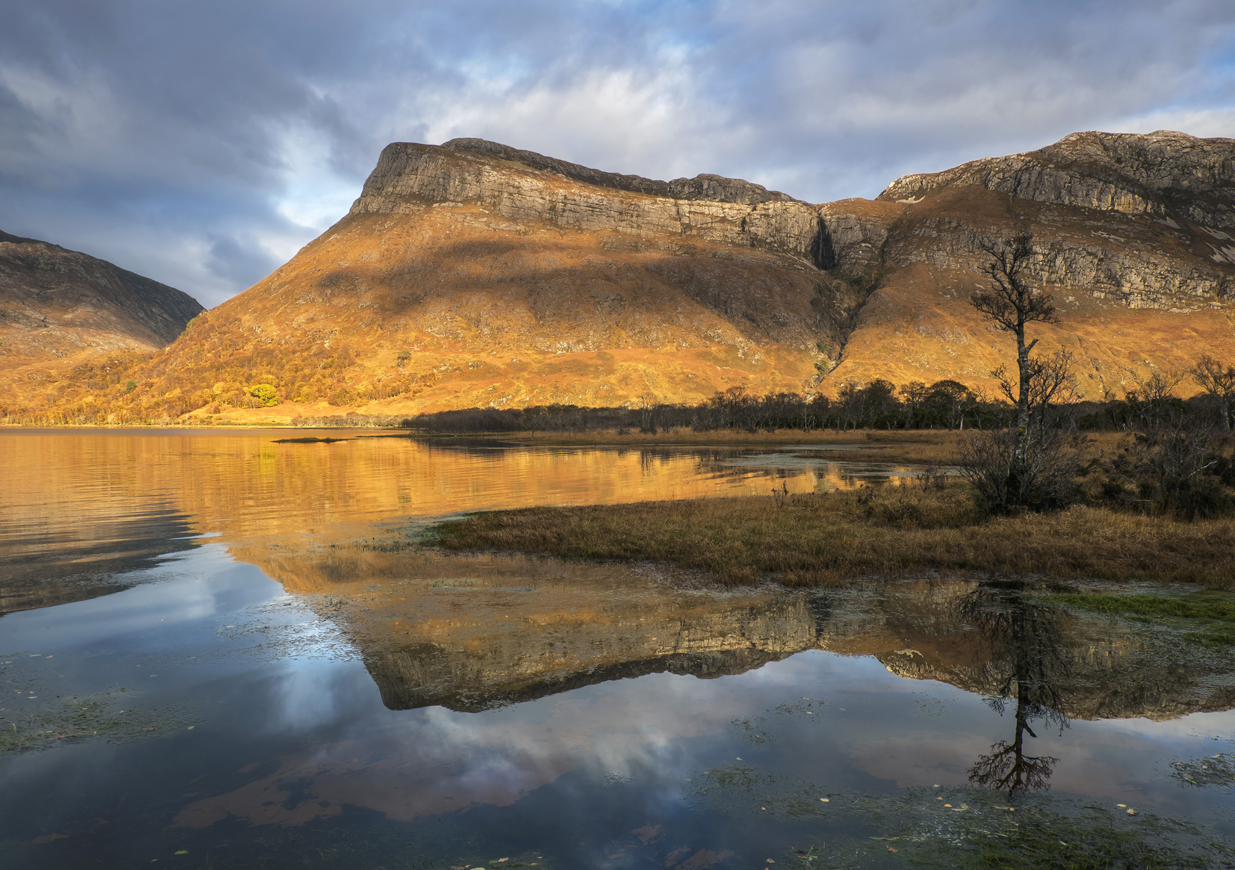 At the end of the loch near Kinlochewe is a particularly calm section of Loch Maree which features a semi sunken birch woodland...