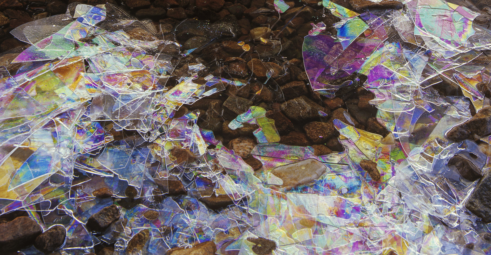 Rainbow plates of razor thin ice refract light to create patterns of colour which under polarised light show up as moving interference...