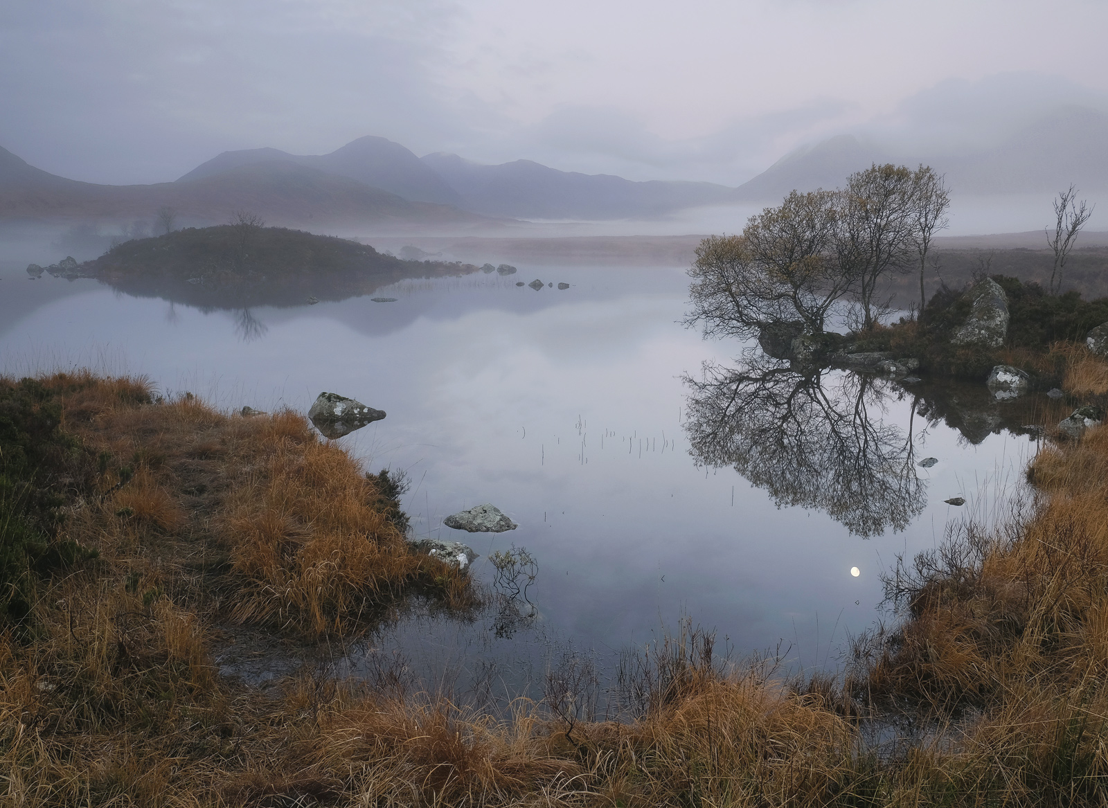 One of my absolute favourite pictures of this little tree mirrored in the still water's of Loch N' Achlaise high on Rannoch Moor...