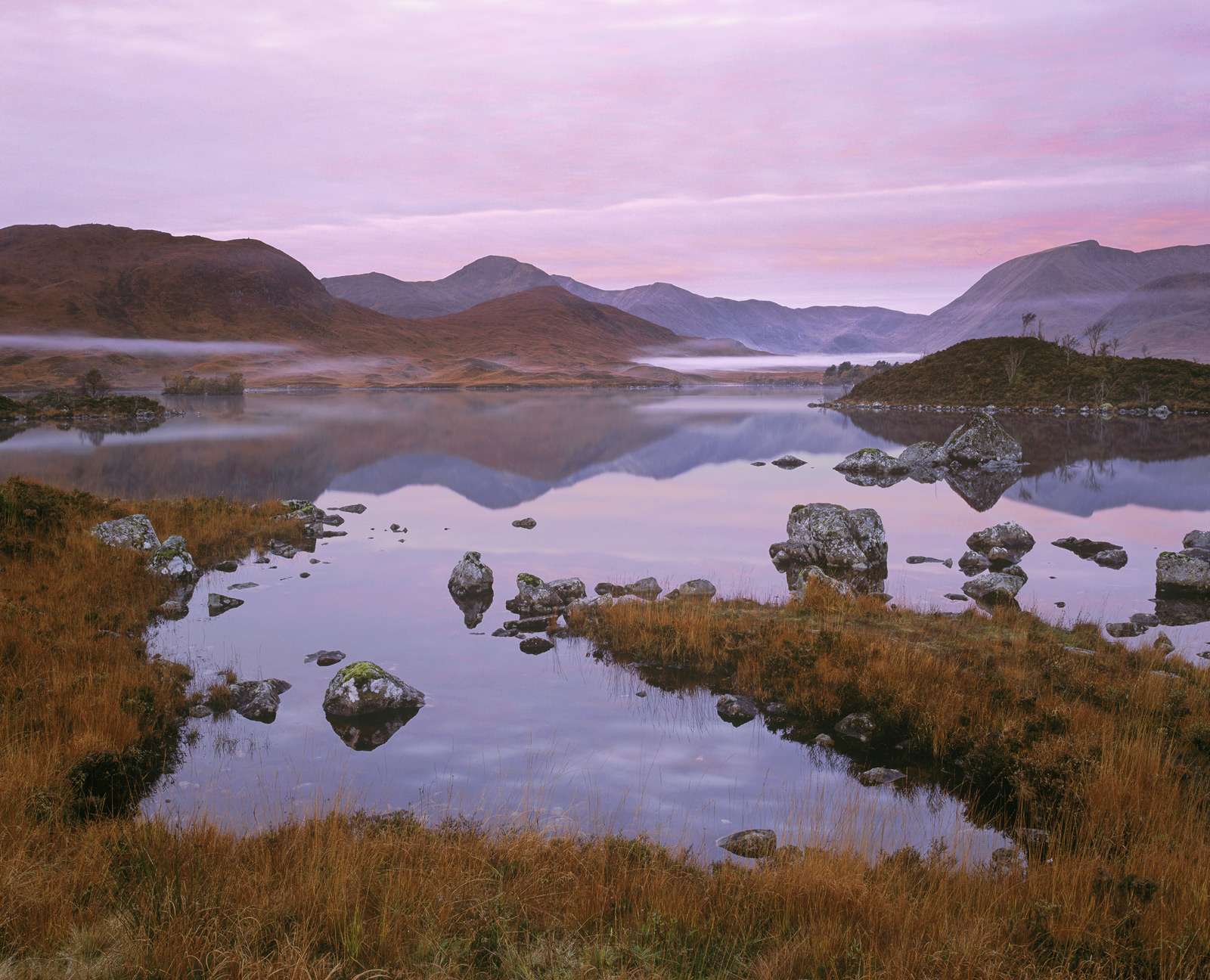 Raspberry Rannoch, Rannoch Moor, Glencoe, Scotland, gorgeous, sunrise, stained, pink, clouds, reflected, orange, deer gr, photo