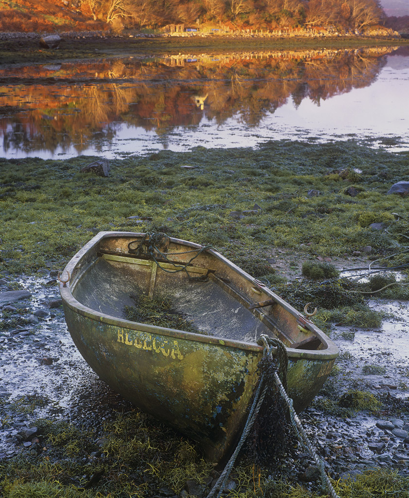 I like little row boats and I particularly like those that have seen better days. This one is riddled with character her...