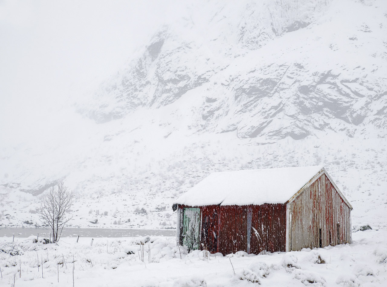 Red Shed Snow, Bo, Lofoten, Norway, Spring, blizzard, Flakstad Fjord, rumbled, ominously, avalanche, monochrome,  ricket, photo