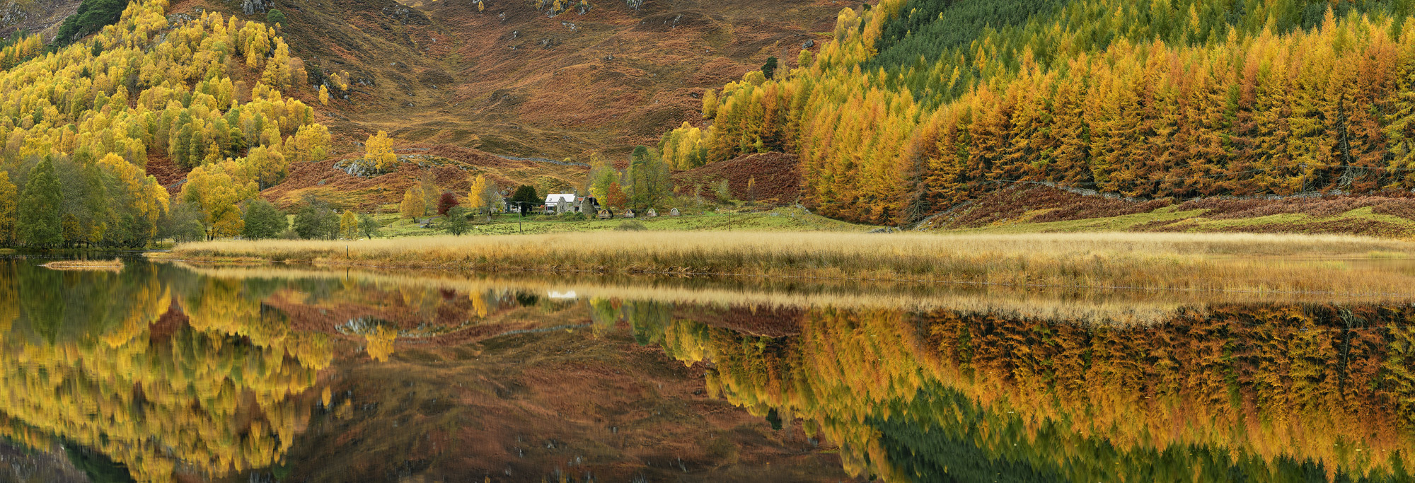 River Cannich Reflections Pano, Glen Cannich, Highlands, Scotland, autumn, colours, larch, evergreen, birch, gold, blazi, photo