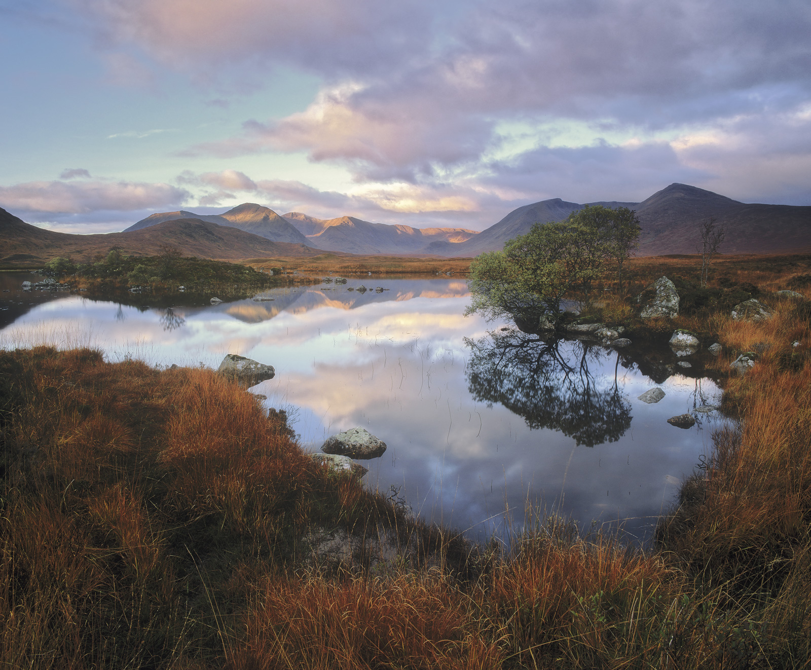 Rusty Rannoch, Rannoch Moor, Glencoe, Scotland, autumnal, foliage, tree, green, orange, fiery, grass, mountains, reflect, photo
