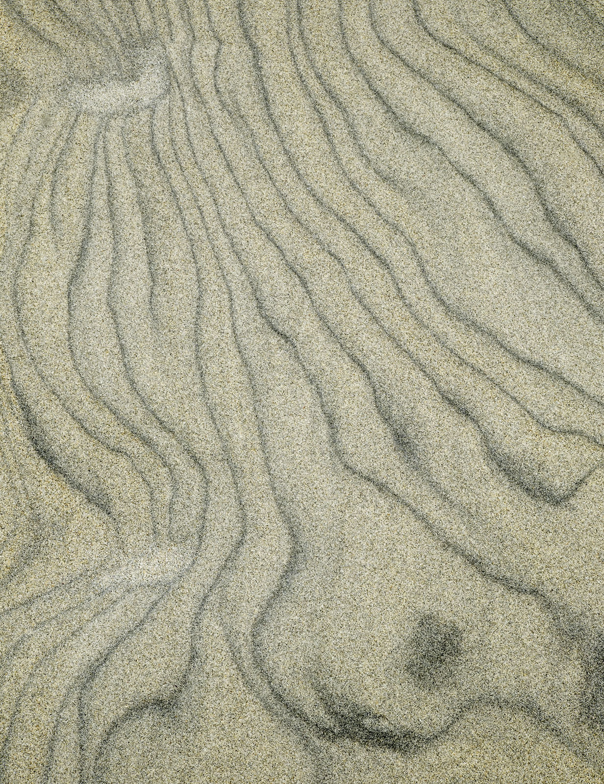 Sand Grain 1, Seilebost, Harris, Scotland, beach, vast, dunes, colossal, expansive, views, details, embedded, stained, photo