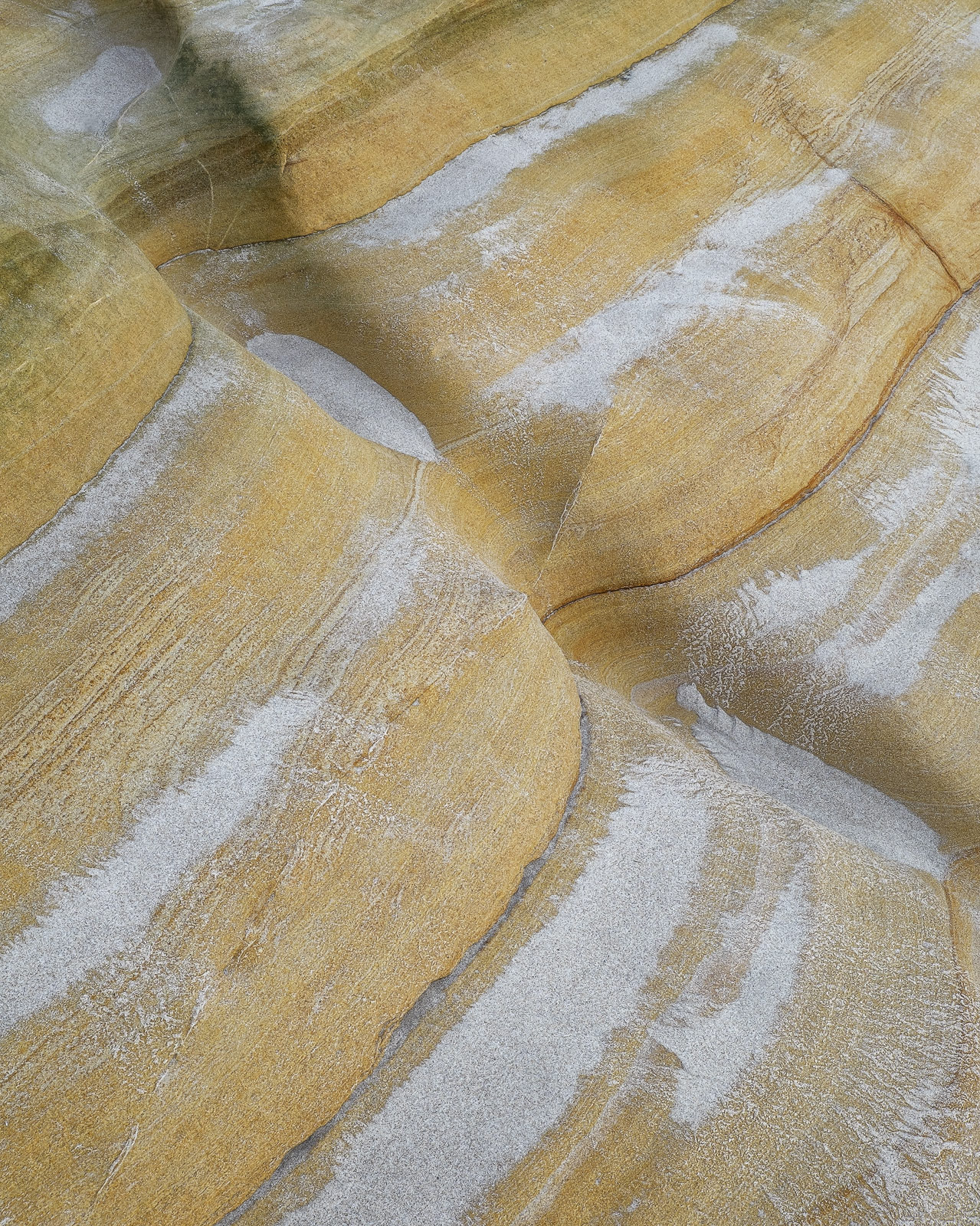 This beautiful sandstone shelf had collected sand in some shallow depressions along its length to form a sandstone torso and...