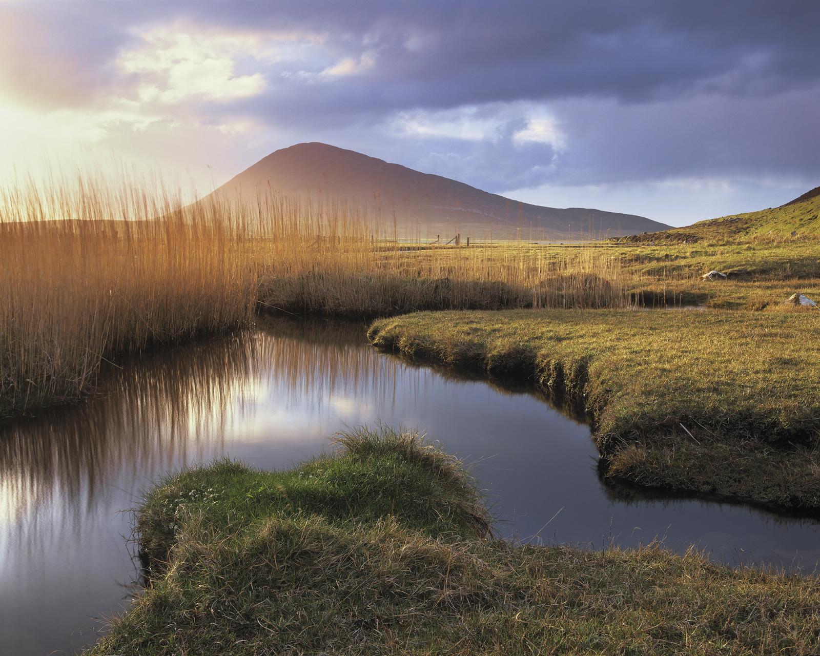 Scarasta Salt Marsh, Scarasta, Harris, Scotland, view, intriguing, patterns, marsh, reed, gold, Celaphabal, shapely, pea, photo