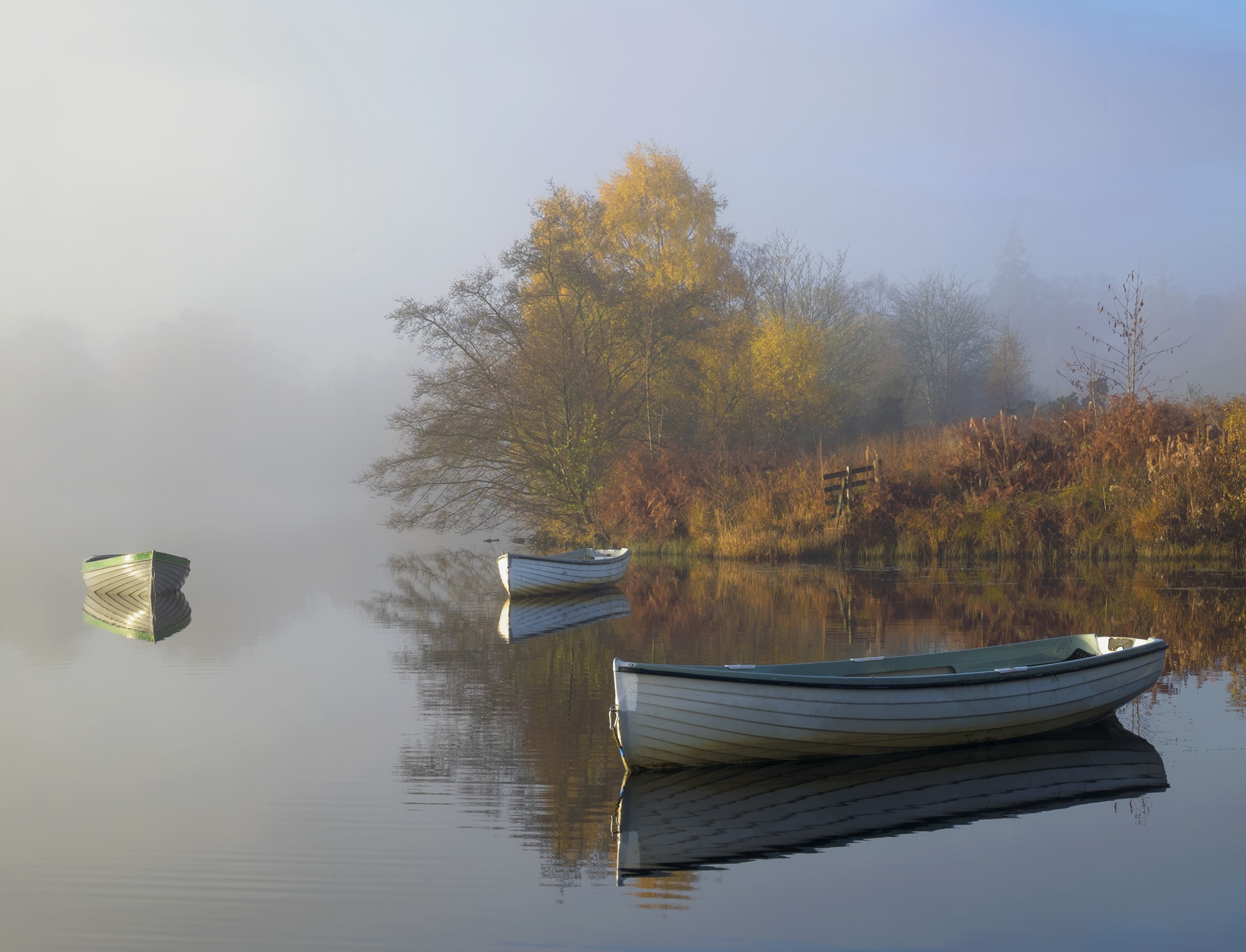 This charming little loch is often a stunning surprise waiting to happen particular during autumn where it gathers and traps...
